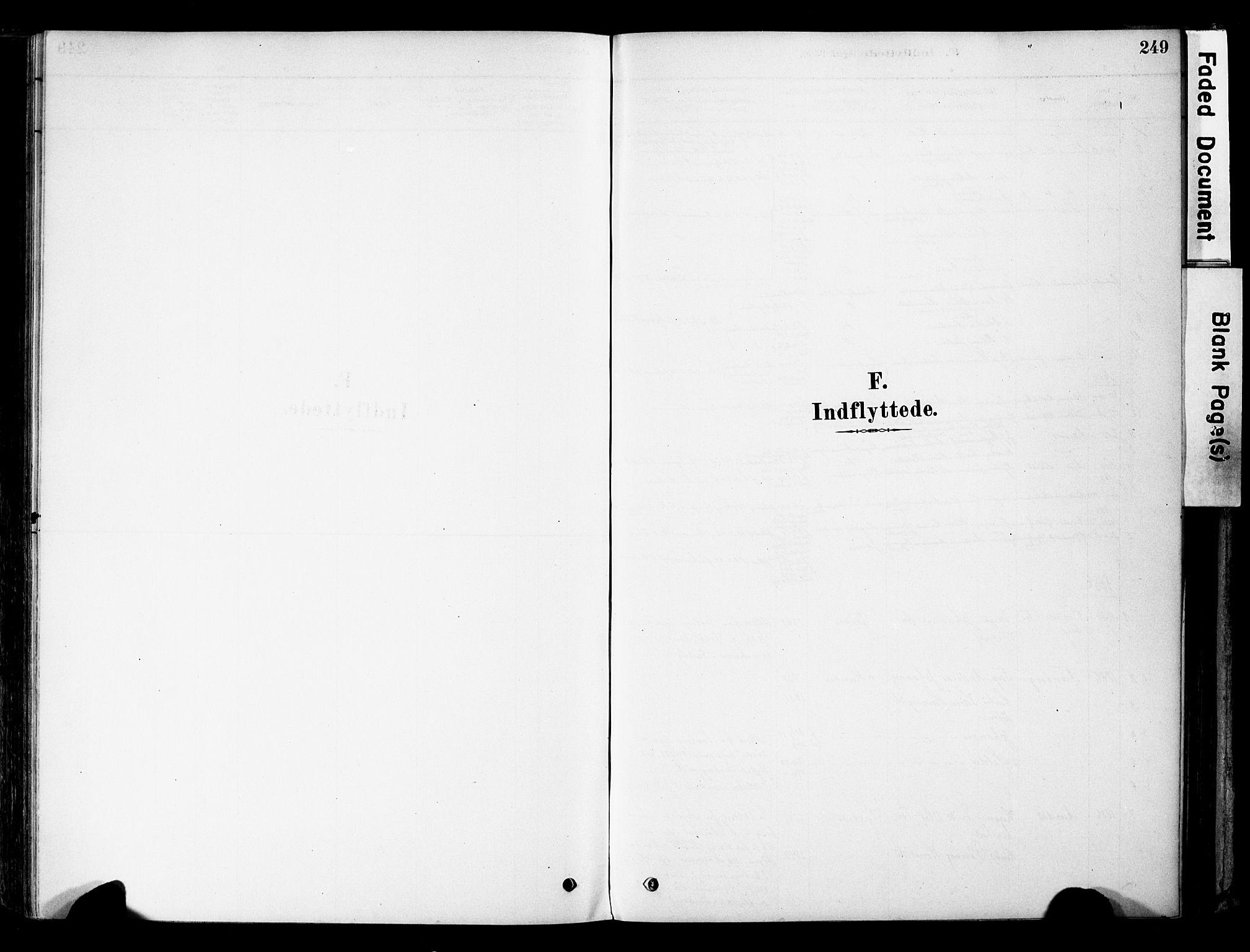 SAH, Øyer prestekontor, Ministerialbok nr. 8, 1878-1897, s. 249