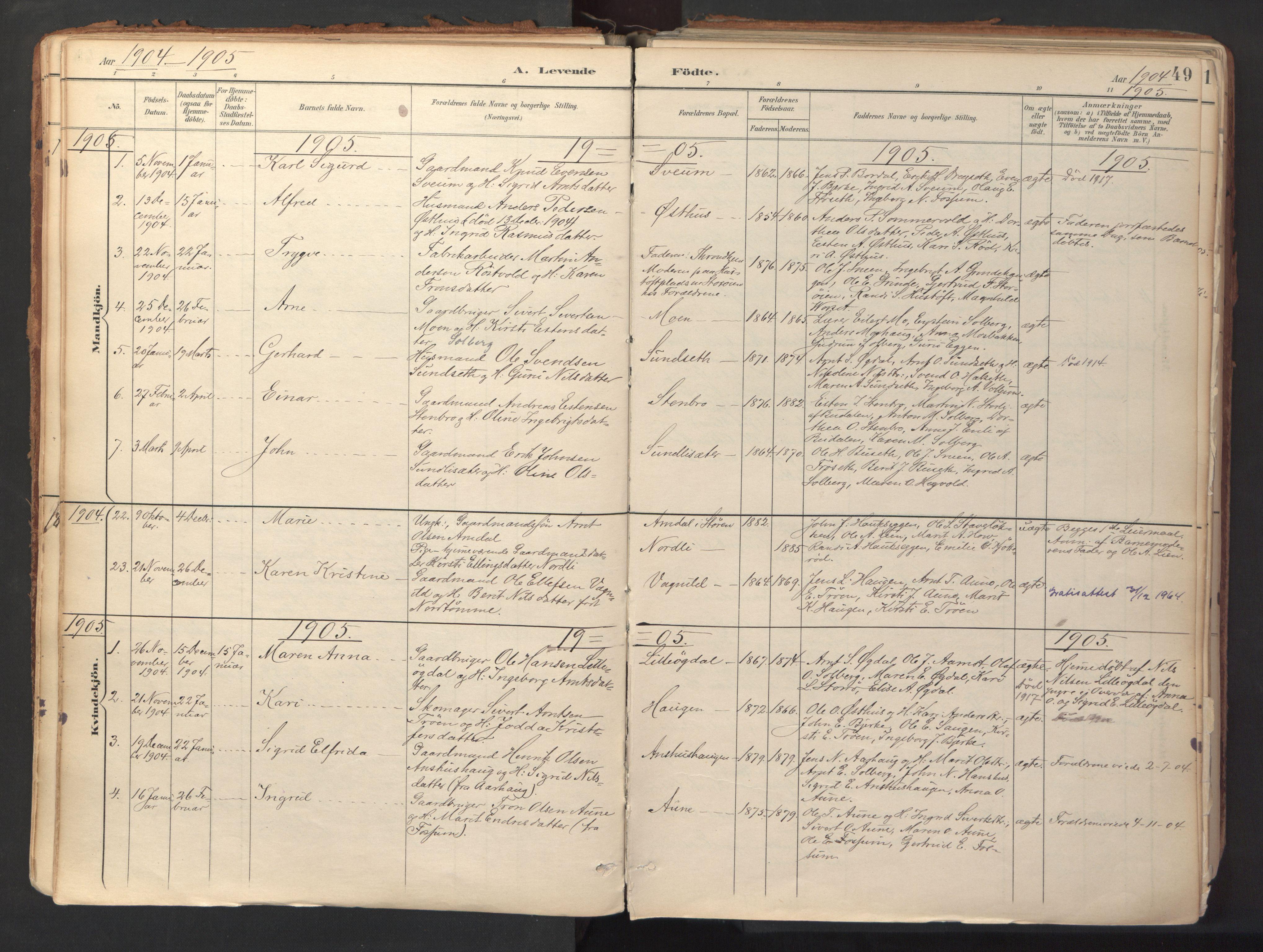SAT, Ministerialprotokoller, klokkerbøker og fødselsregistre - Sør-Trøndelag, 689/L1041: Ministerialbok nr. 689A06, 1891-1923, s. 49