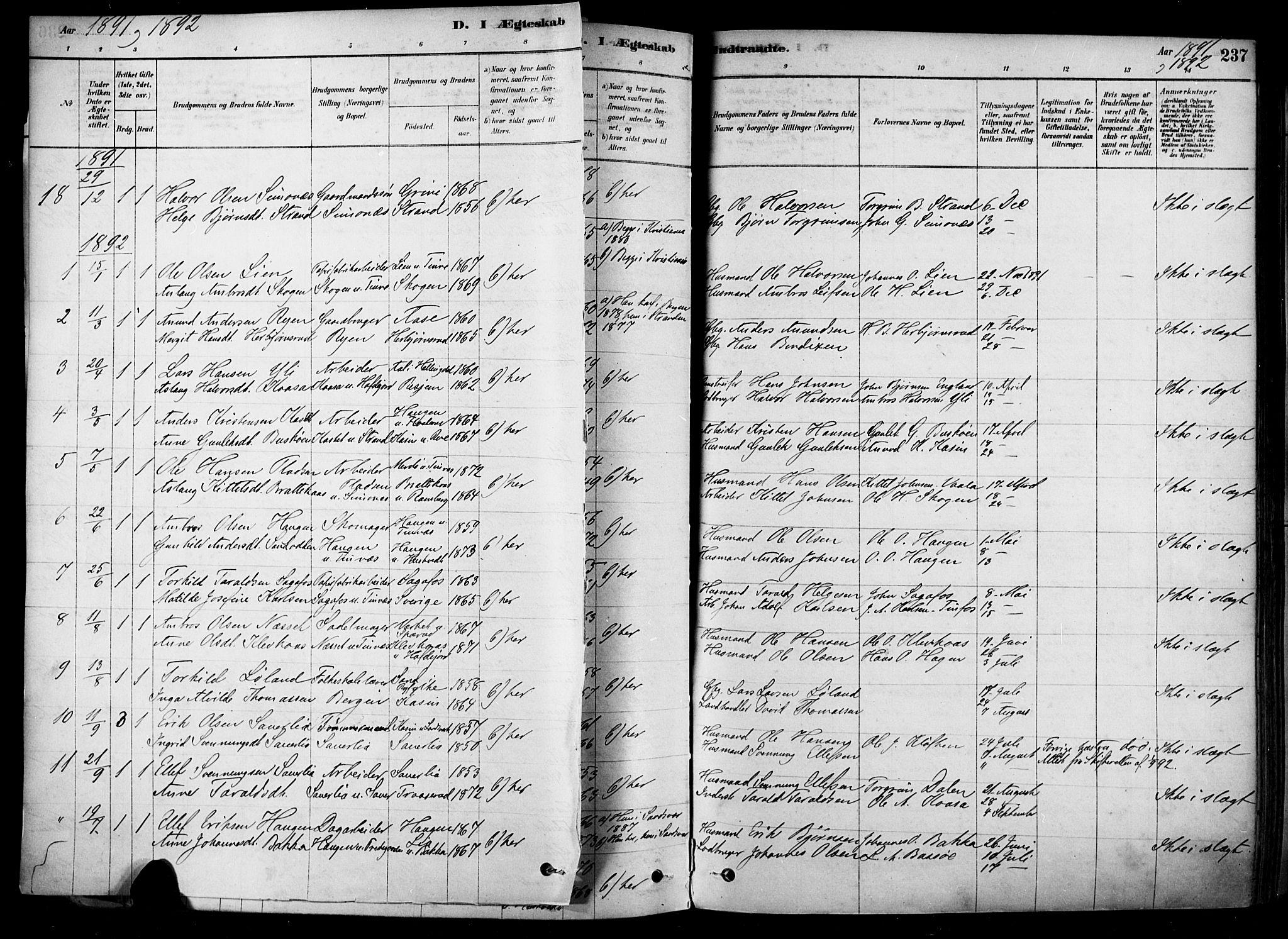 SAKO, Heddal kirkebøker, F/Fa/L0008: Ministerialbok nr. I 8, 1878-1903, s. 237