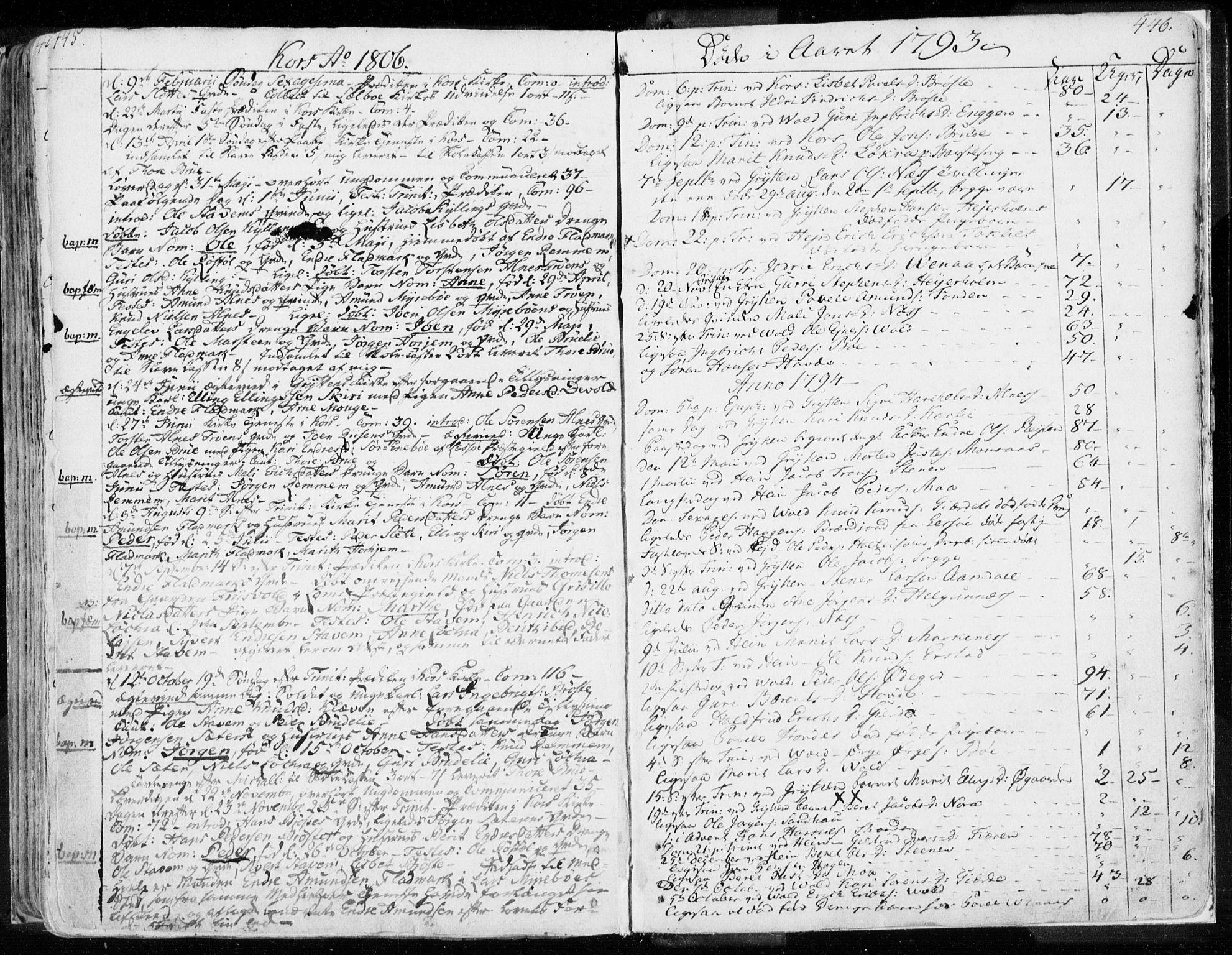 SAT, Ministerialprotokoller, klokkerbøker og fødselsregistre - Møre og Romsdal, 544/L0569: Ministerialbok nr. 544A02, 1764-1806, s. 445-446