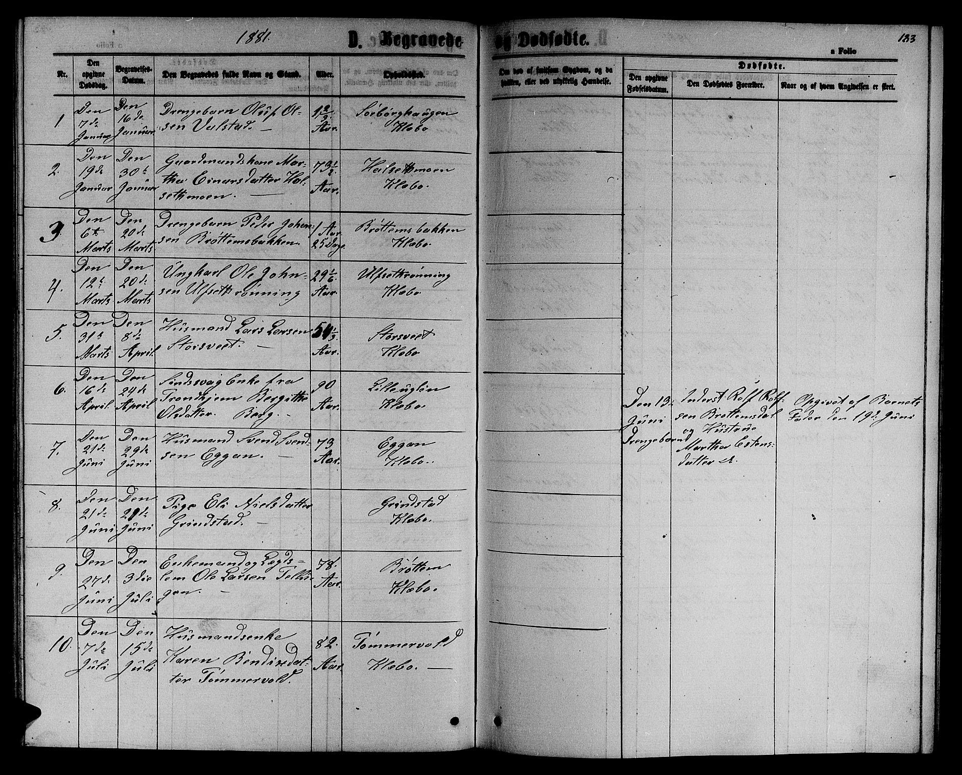 SAT, Ministerialprotokoller, klokkerbøker og fødselsregistre - Sør-Trøndelag, 618/L0451: Klokkerbok nr. 618C02, 1865-1883, s. 183