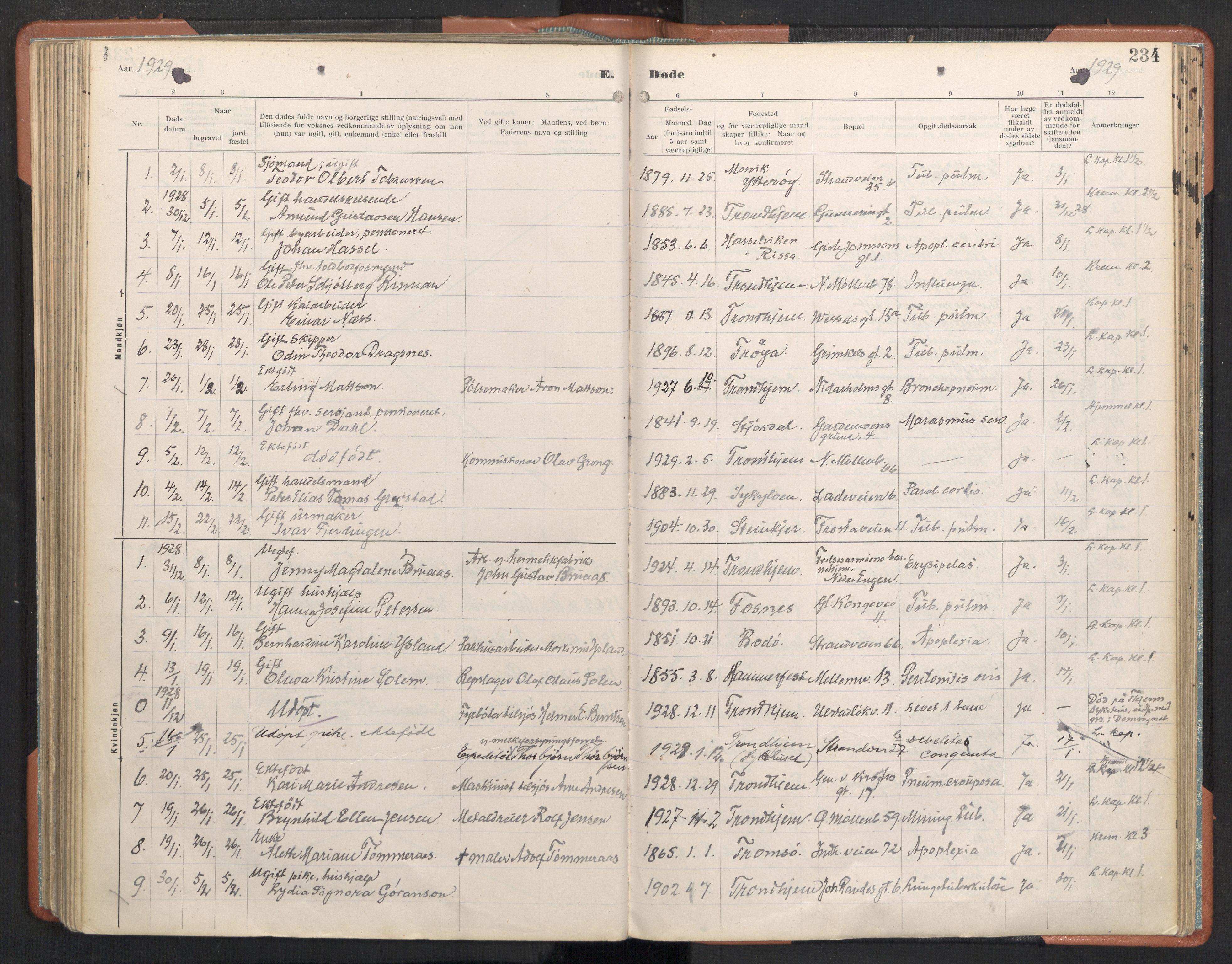 SAT, Ministerialprotokoller, klokkerbøker og fødselsregistre - Sør-Trøndelag, 605/L0245: Ministerialbok nr. 605A07, 1916-1938, s. 234