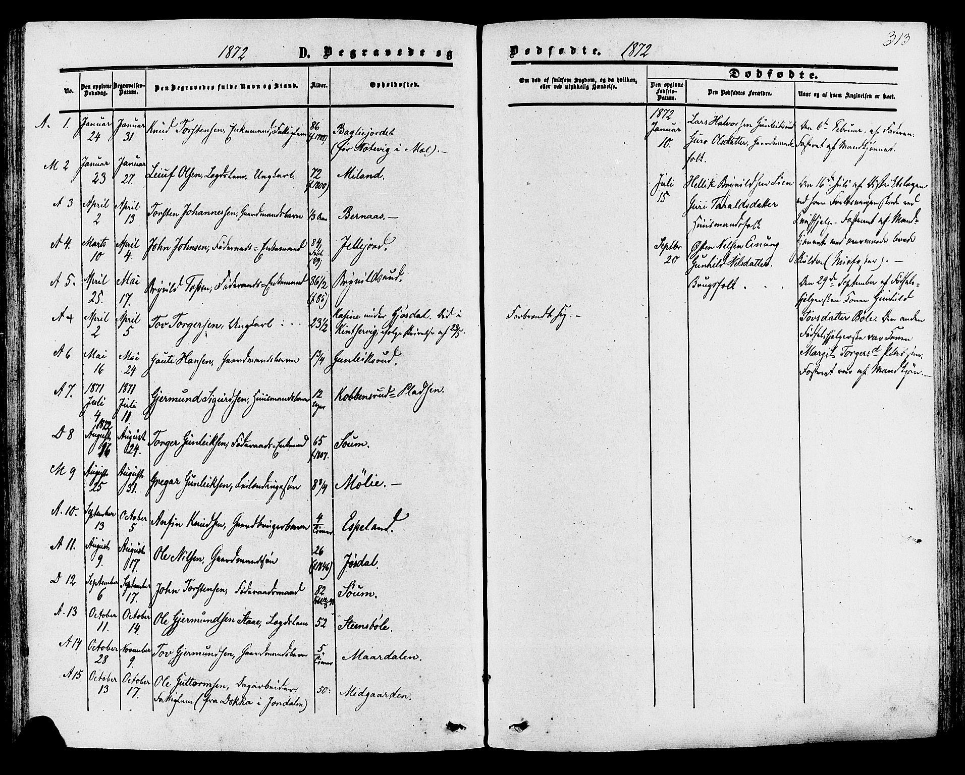 SAKO, Tinn kirkebøker, F/Fa/L0006: Ministerialbok nr. I 6, 1857-1878, s. 313