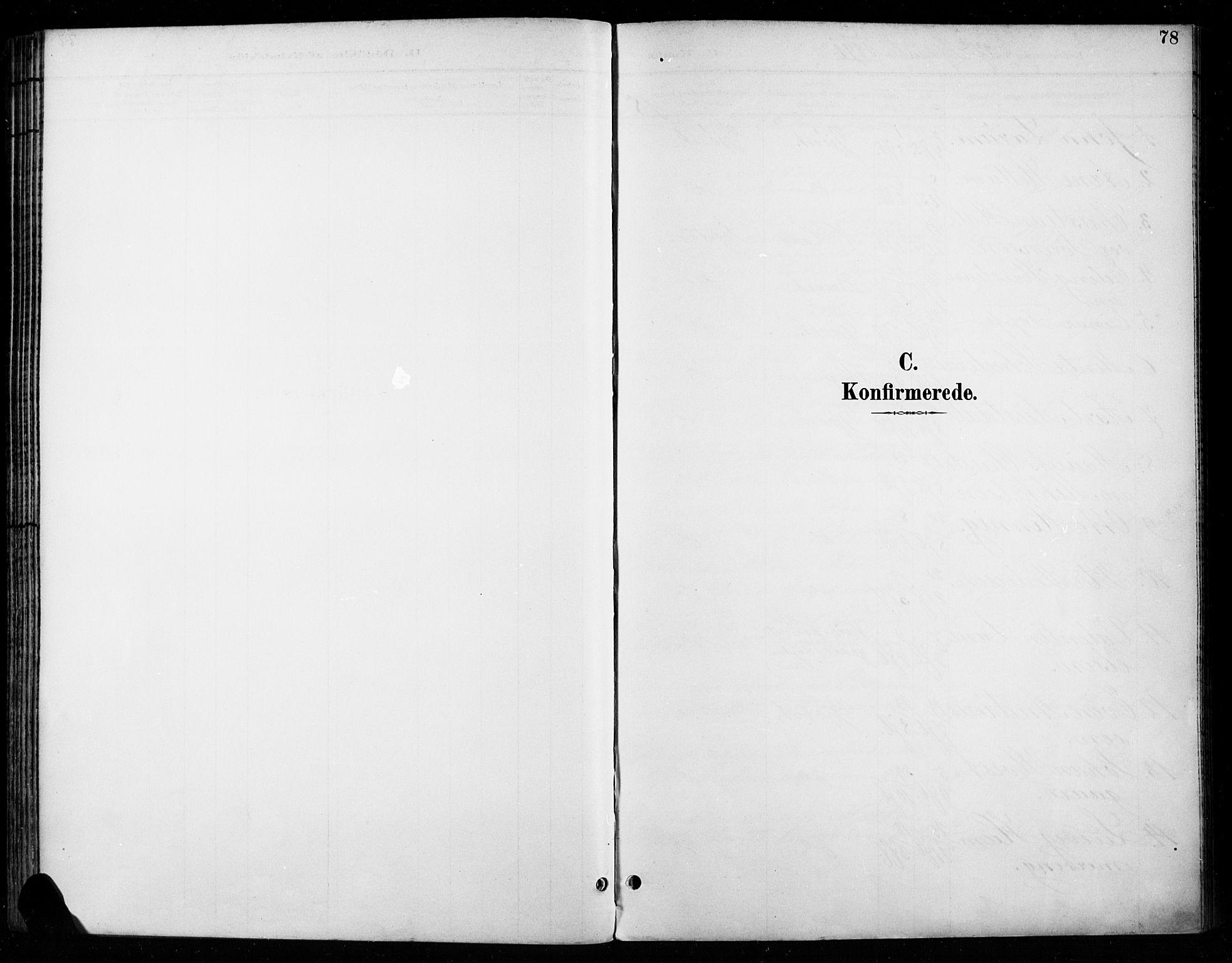 SAH, Vardal prestekontor, H/Ha/Haa/L0011: Ministerialbok nr. 11, 1891-1901, s. 78