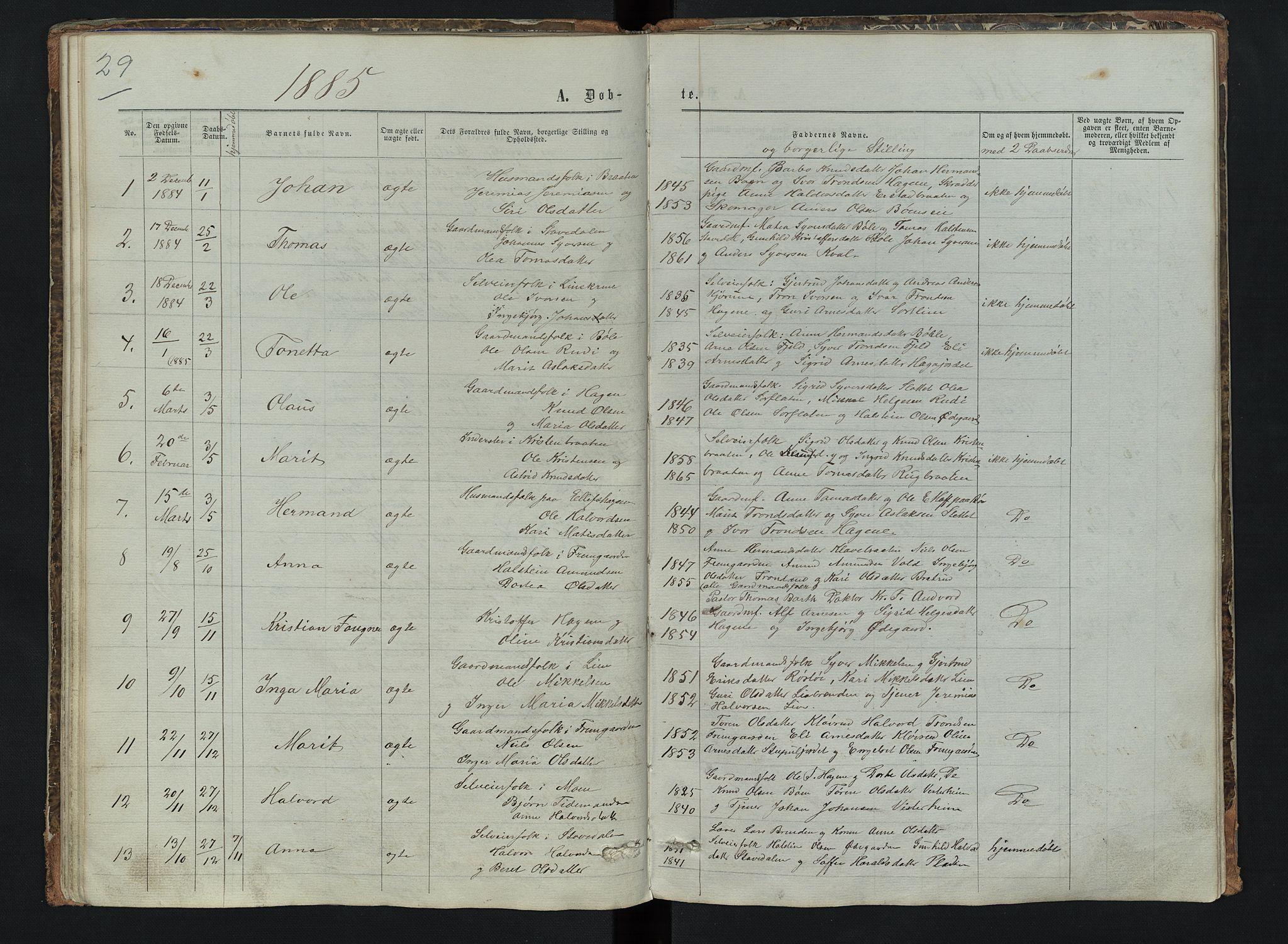 SAH, Sør-Aurdal prestekontor, Klokkerbok nr. 6, 1866-1893, s. 29