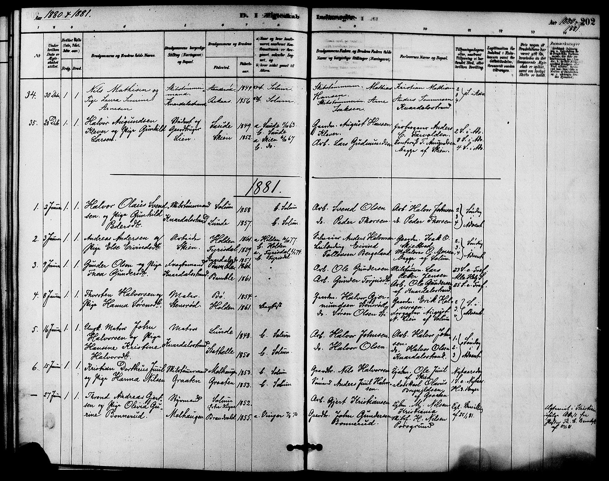 SAKO, Solum kirkebøker, F/Fa/L0009: Ministerialbok nr. I 9, 1877-1887, s. 202