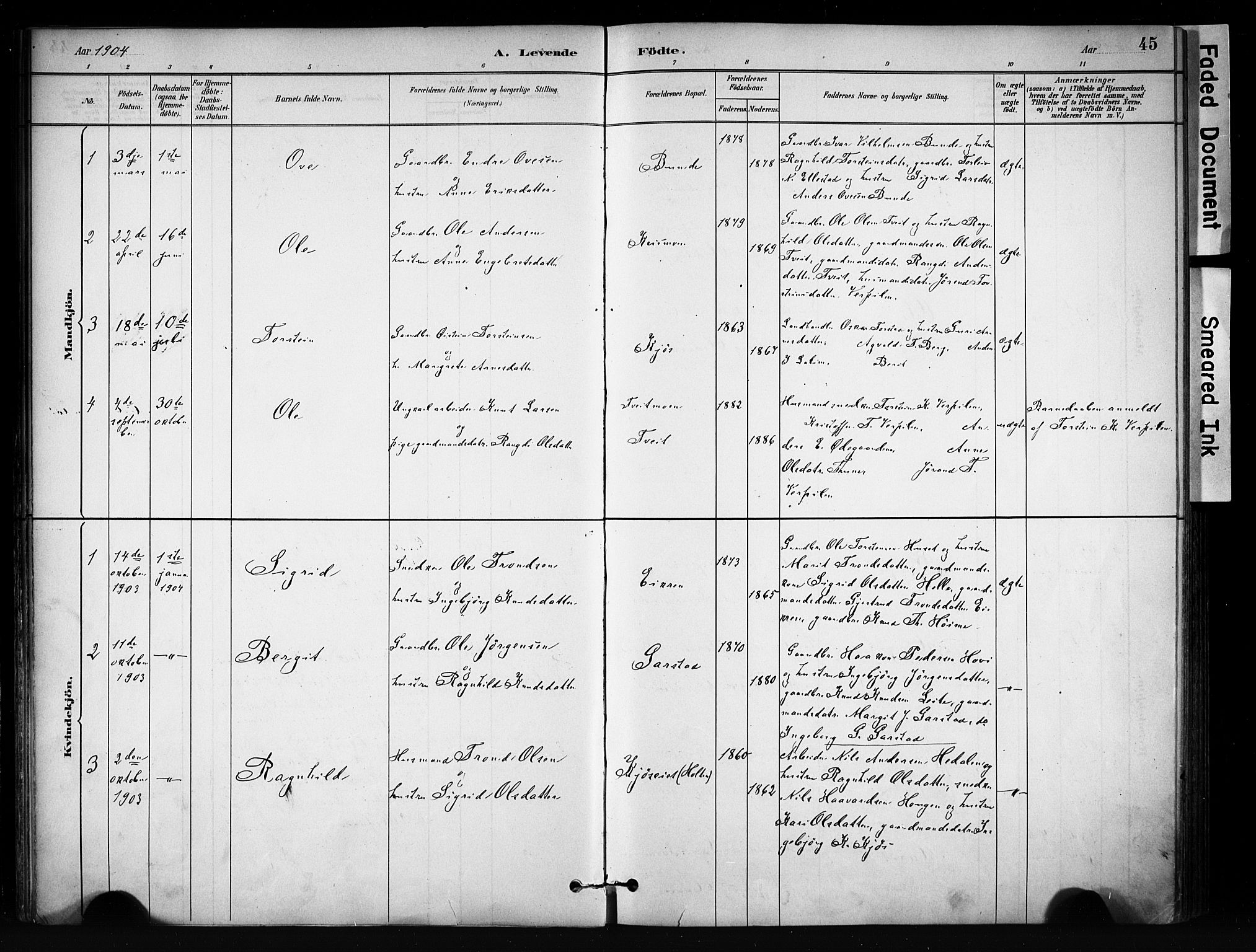 SAH, Vang prestekontor, Valdres, Ministerialbok nr. 9, 1882-1914, s. 45