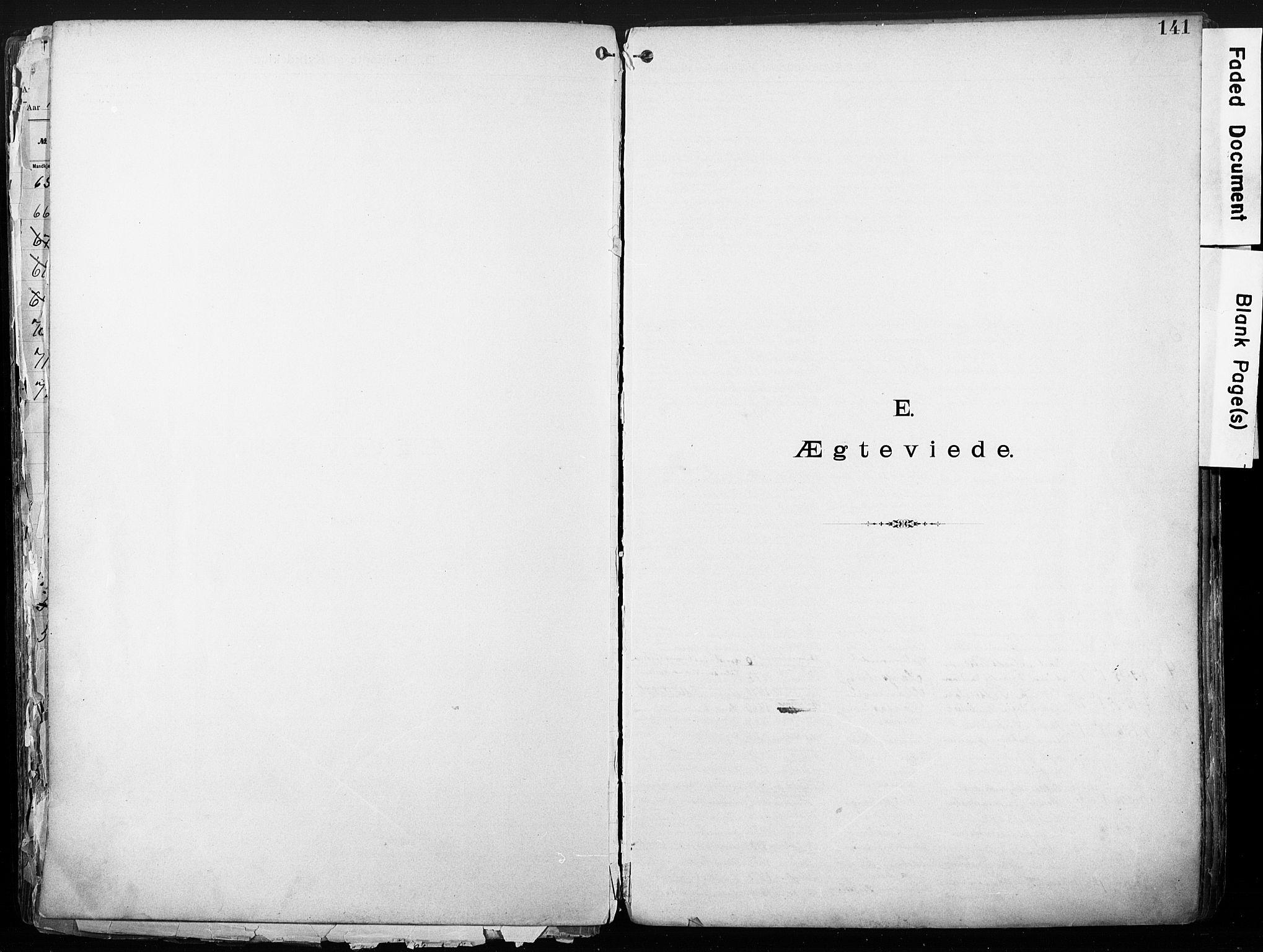 SAO, Sarpsborg metodistkirke, A/L0004: Dissenterprotokoll nr. 4, 1892-1923, s. 141