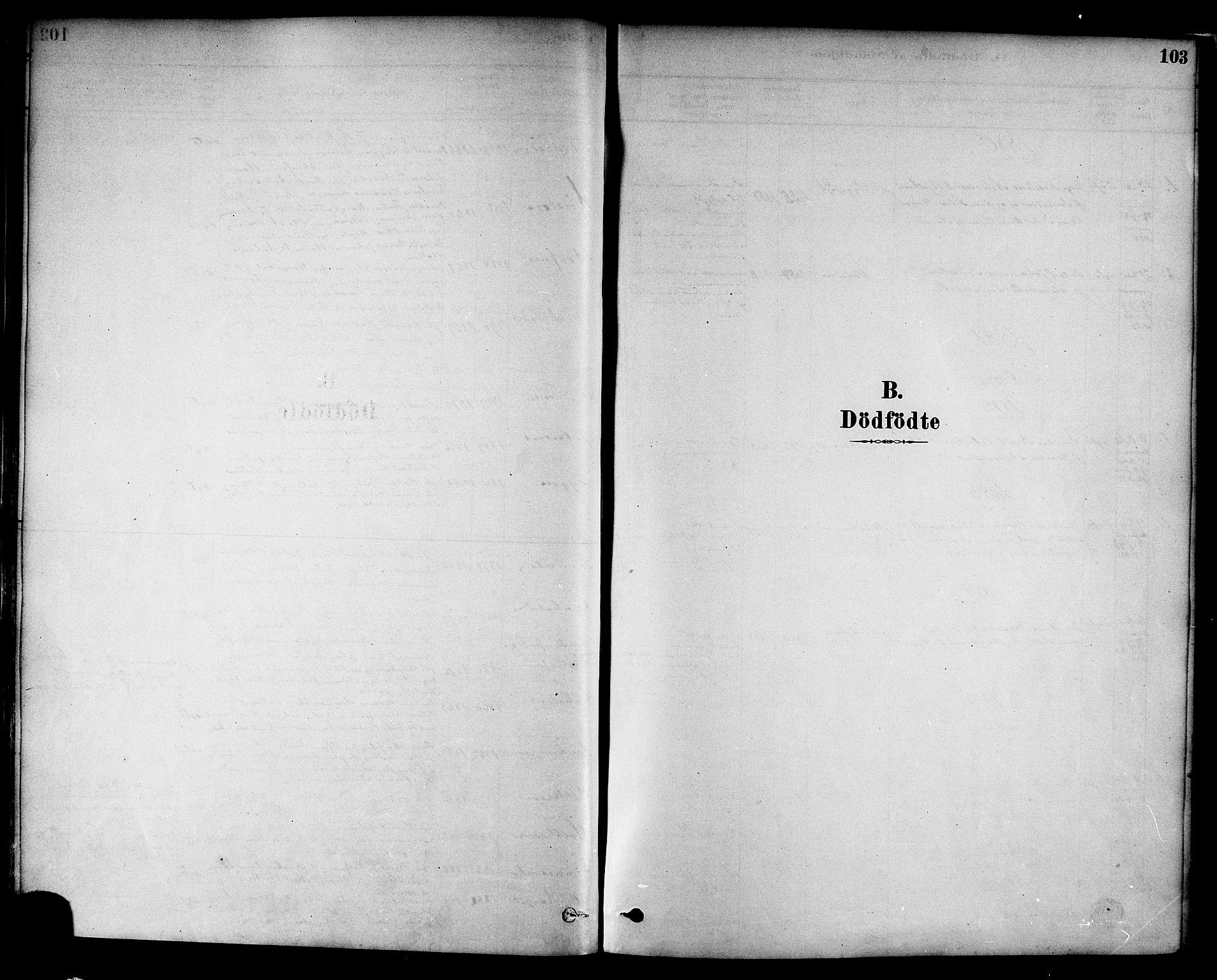 SAT, Ministerialprotokoller, klokkerbøker og fødselsregistre - Nord-Trøndelag, 717/L0159: Ministerialbok nr. 717A09, 1878-1898, s. 103