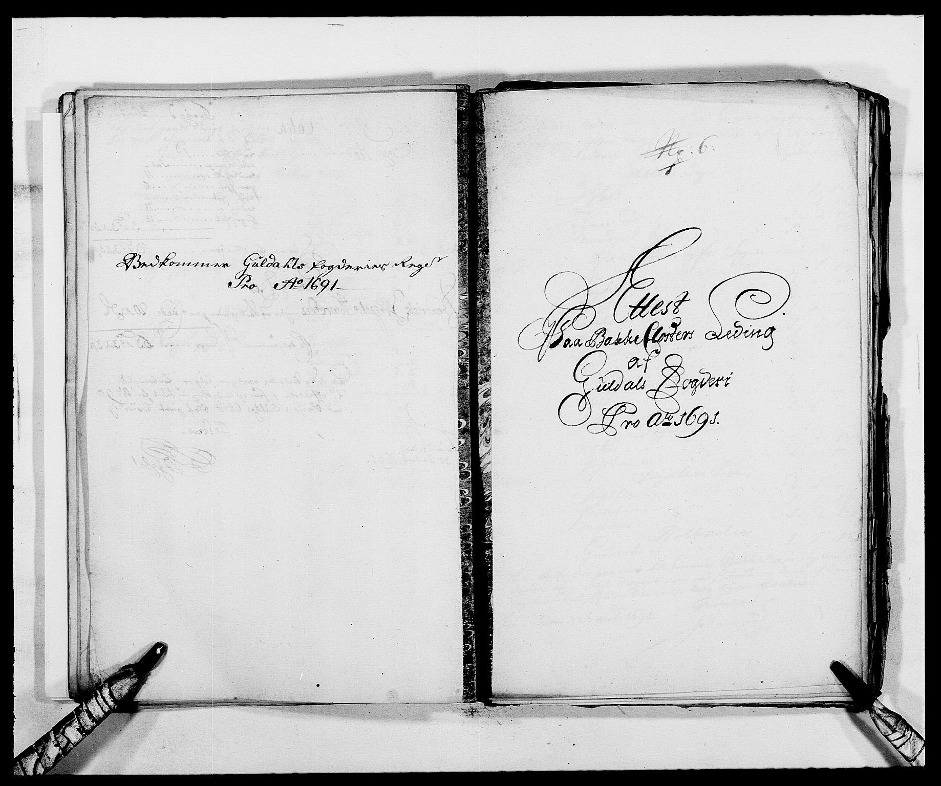 RA, Rentekammeret inntil 1814, Reviderte regnskaper, Fogderegnskap, R59/L3941: Fogderegnskap Gauldal, 1691, s. 193