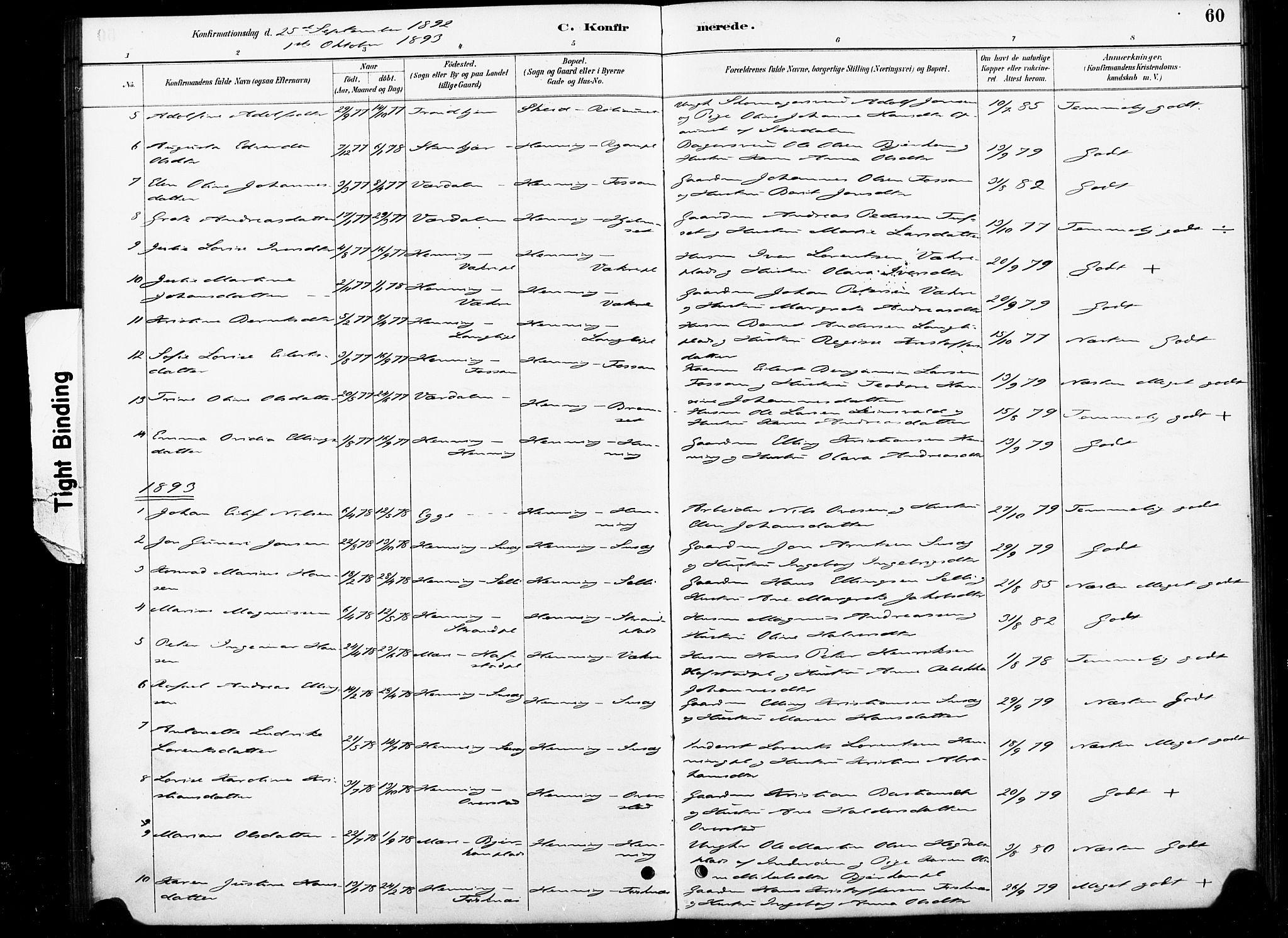 SAT, Ministerialprotokoller, klokkerbøker og fødselsregistre - Nord-Trøndelag, 738/L0364: Ministerialbok nr. 738A01, 1884-1902, s. 60