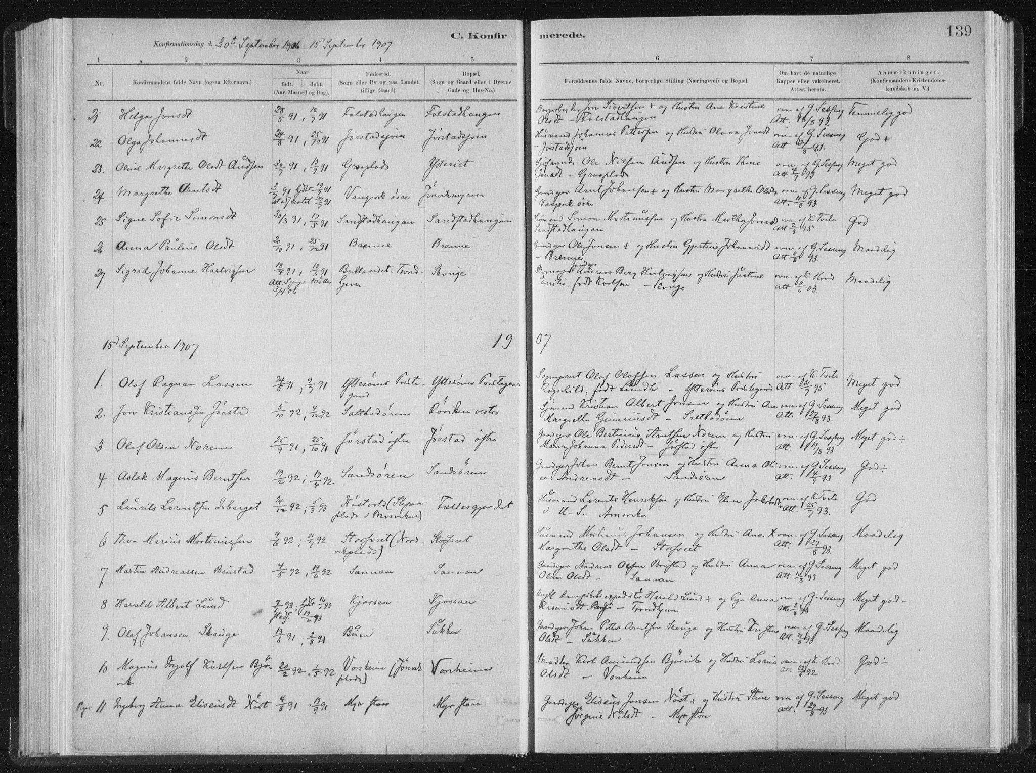 SAT, Ministerialprotokoller, klokkerbøker og fødselsregistre - Nord-Trøndelag, 722/L0220: Ministerialbok nr. 722A07, 1881-1908, s. 139