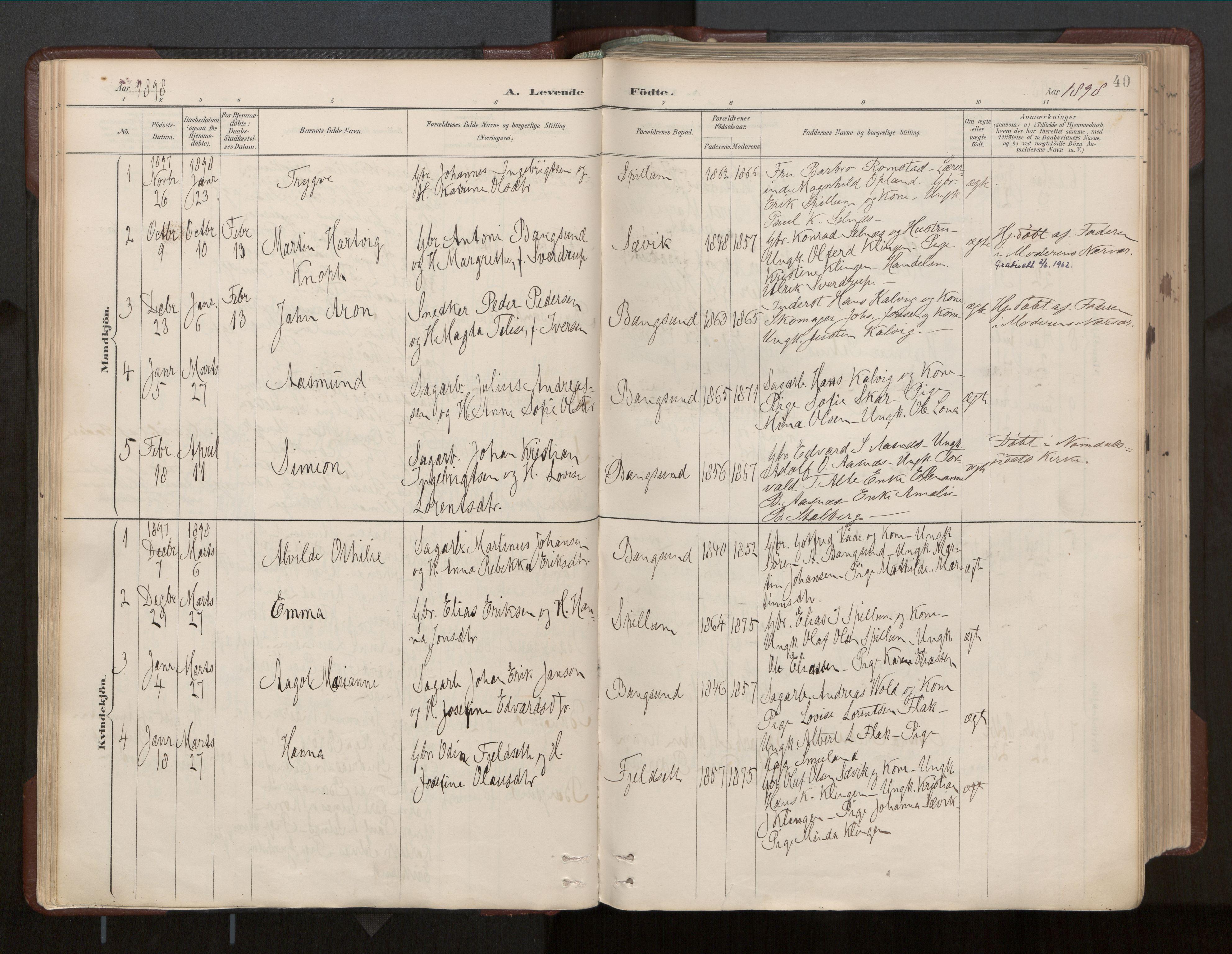 SAT, Ministerialprotokoller, klokkerbøker og fødselsregistre - Nord-Trøndelag, 770/L0589: Ministerialbok nr. 770A03, 1887-1929, s. 40