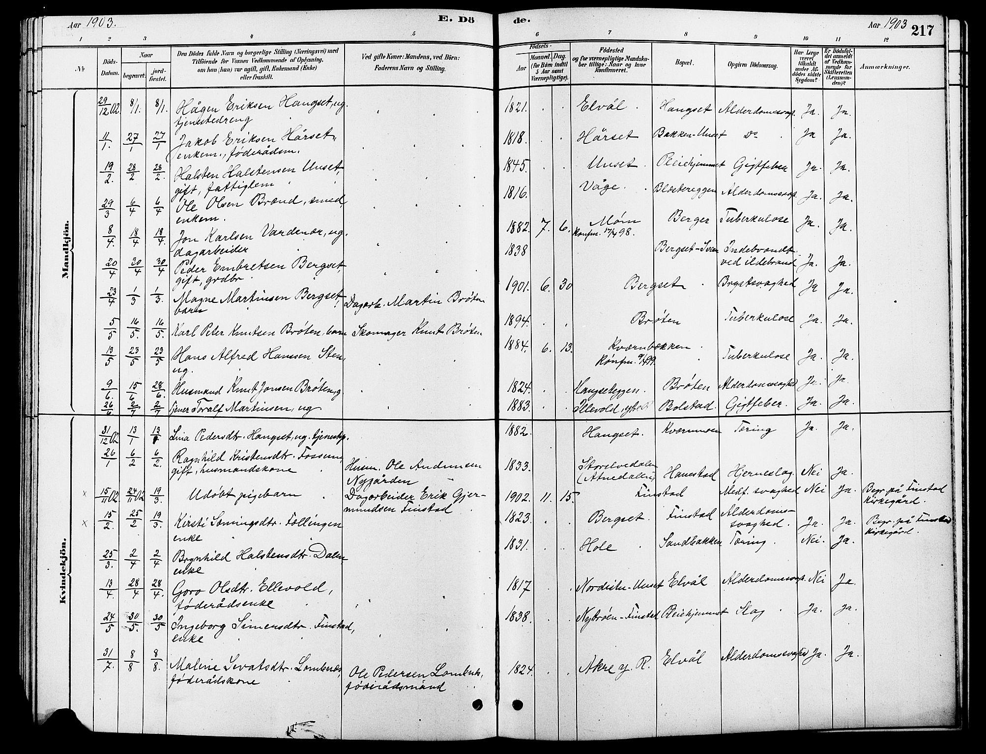 SAH, Rendalen prestekontor, H/Ha/Hab/L0003: Klokkerbok nr. 3, 1879-1904, s. 217