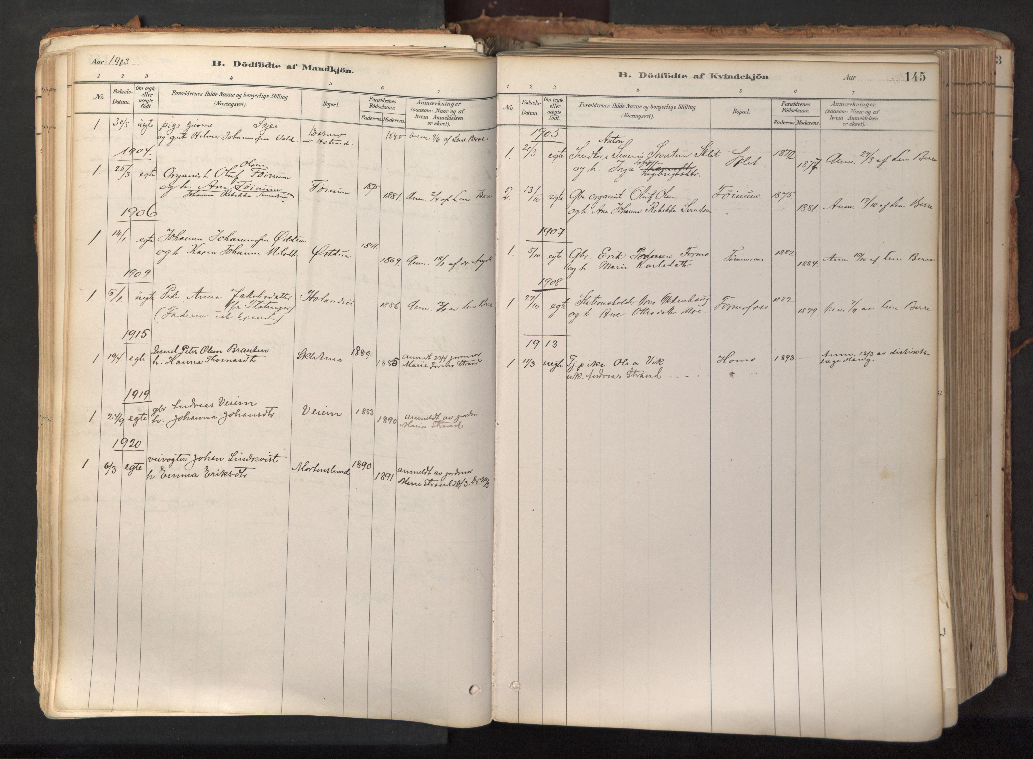SAT, Ministerialprotokoller, klokkerbøker og fødselsregistre - Nord-Trøndelag, 758/L0519: Ministerialbok nr. 758A04, 1880-1926, s. 145