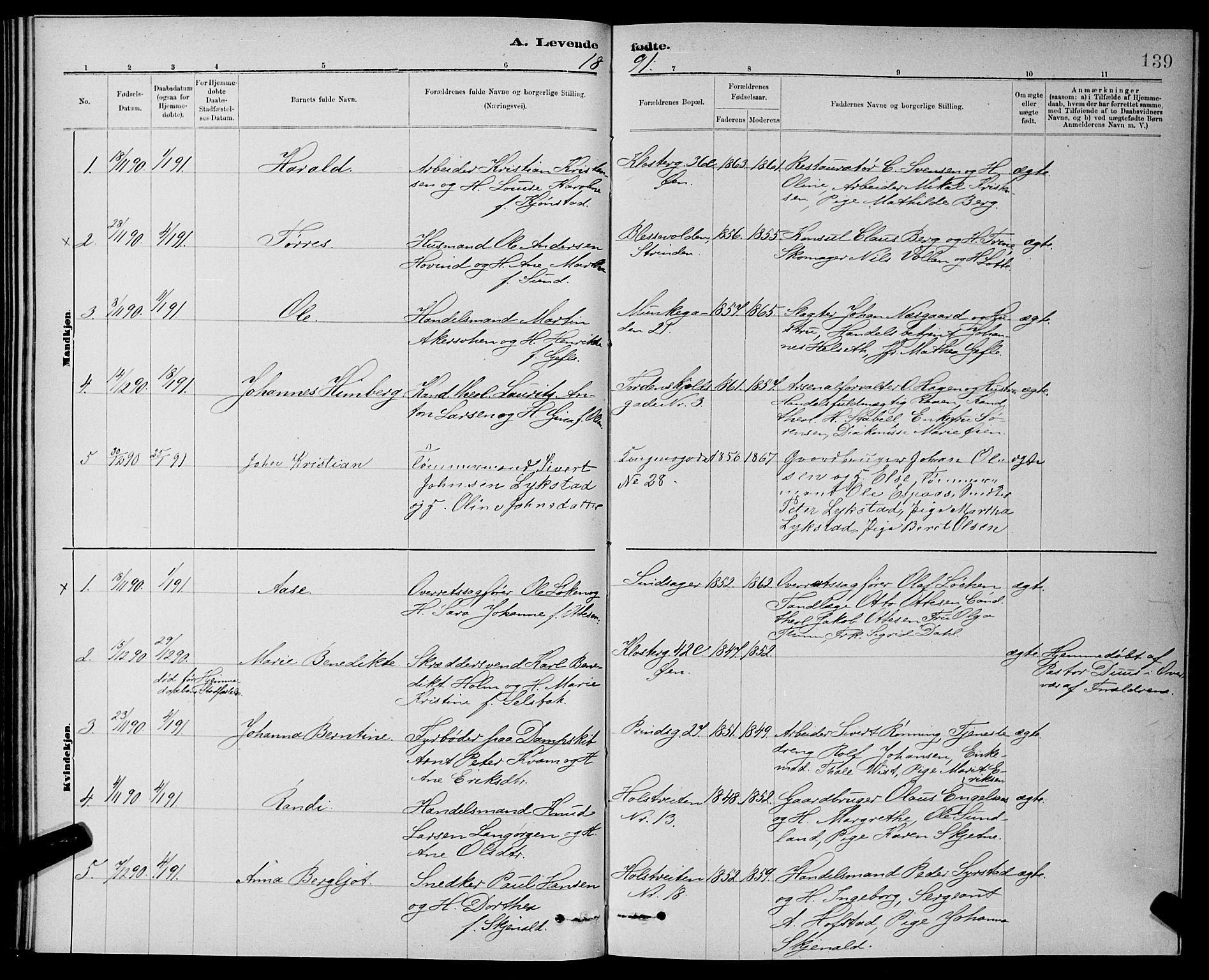 SAT, Ministerialprotokoller, klokkerbøker og fødselsregistre - Sør-Trøndelag, 601/L0092: Klokkerbok nr. 601C10, 1884-1897, s. 139