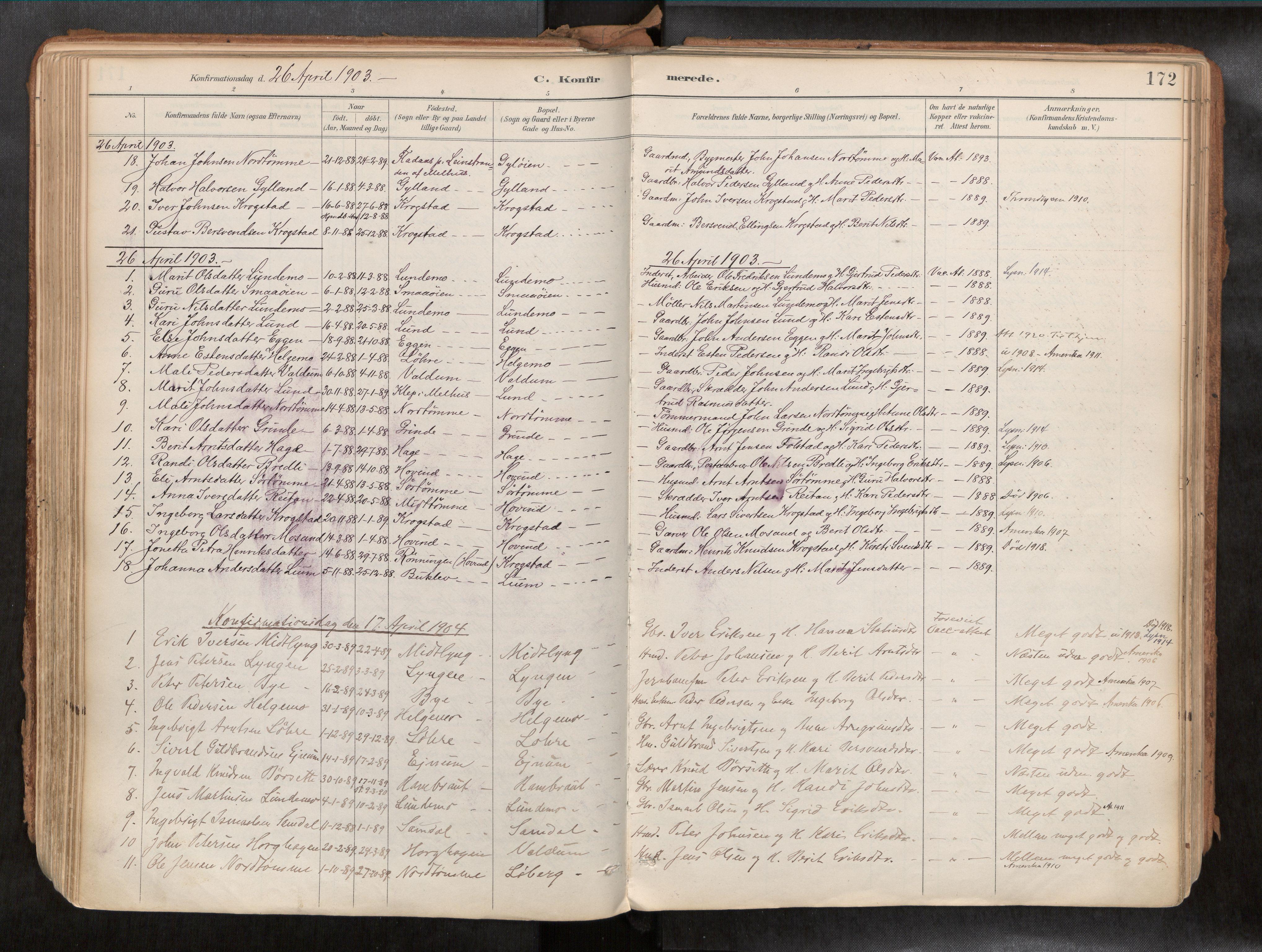 SAT, Ministerialprotokoller, klokkerbøker og fødselsregistre - Sør-Trøndelag, 692/L1105b: Ministerialbok nr. 692A06, 1891-1934, s. 172