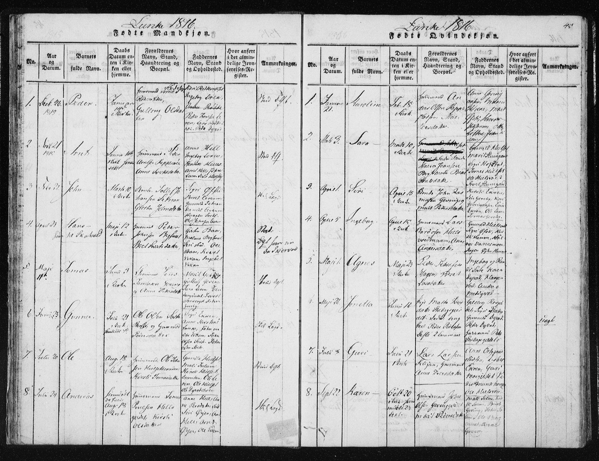 SAT, Ministerialprotokoller, klokkerbøker og fødselsregistre - Nord-Trøndelag, 709/L0061: Ministerialbok nr. 709A08 /3, 1815-1819, s. 45