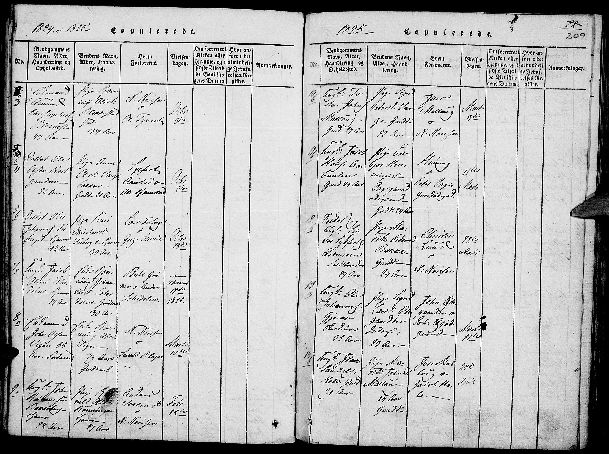 SAH, Lom prestekontor, K/L0004: Ministerialbok nr. 4, 1815-1825, s. 209