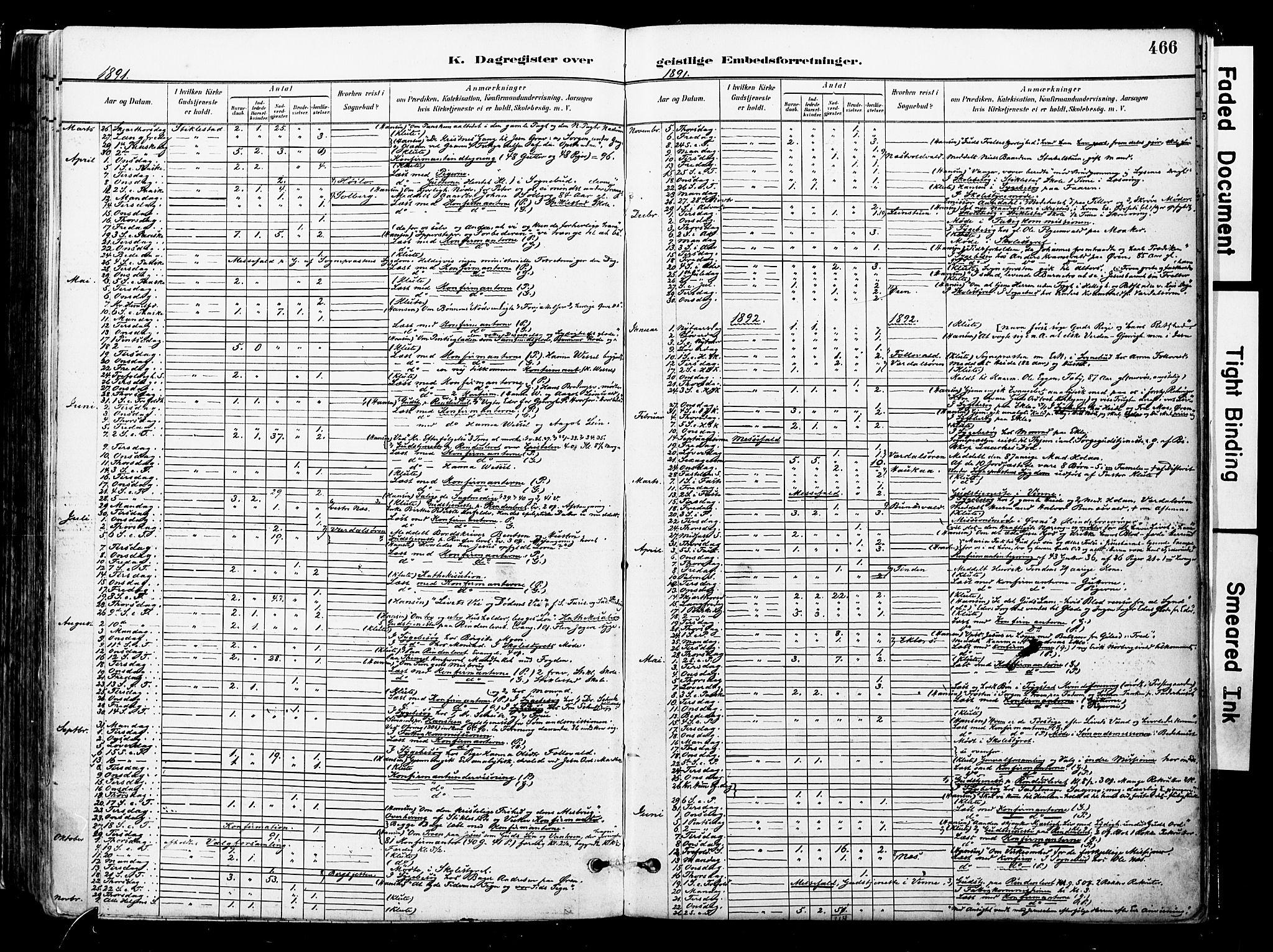 SAT, Ministerialprotokoller, klokkerbøker og fødselsregistre - Nord-Trøndelag, 723/L0244: Ministerialbok nr. 723A13, 1881-1899, s. 466