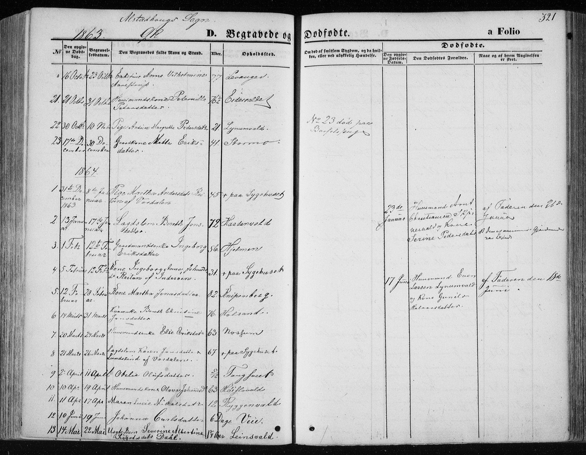 SAT, Ministerialprotokoller, klokkerbøker og fødselsregistre - Nord-Trøndelag, 717/L0157: Ministerialbok nr. 717A08 /1, 1863-1877, s. 321