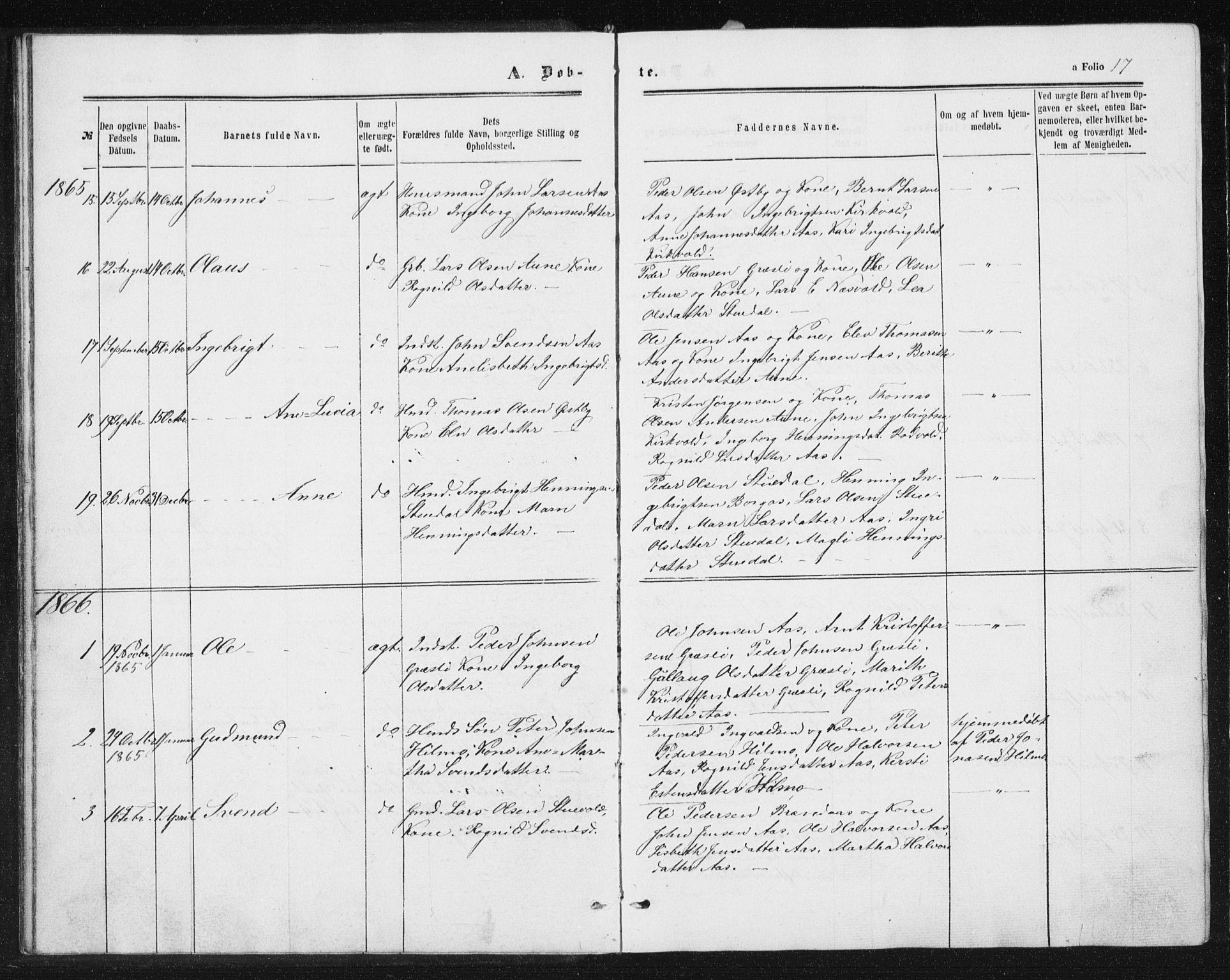 SAT, Ministerialprotokoller, klokkerbøker og fødselsregistre - Sør-Trøndelag, 698/L1166: Klokkerbok nr. 698C03, 1861-1887, s. 17