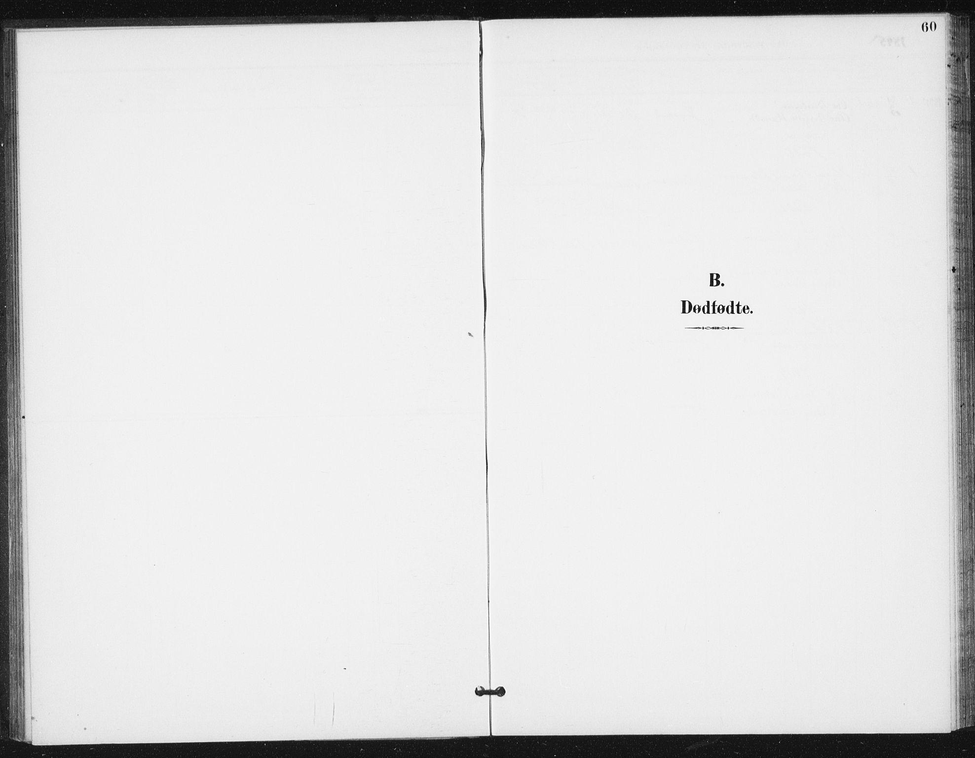SAT, Ministerialprotokoller, klokkerbøker og fødselsregistre - Sør-Trøndelag, 654/L0664: Ministerialbok nr. 654A02, 1895-1907, s. 60