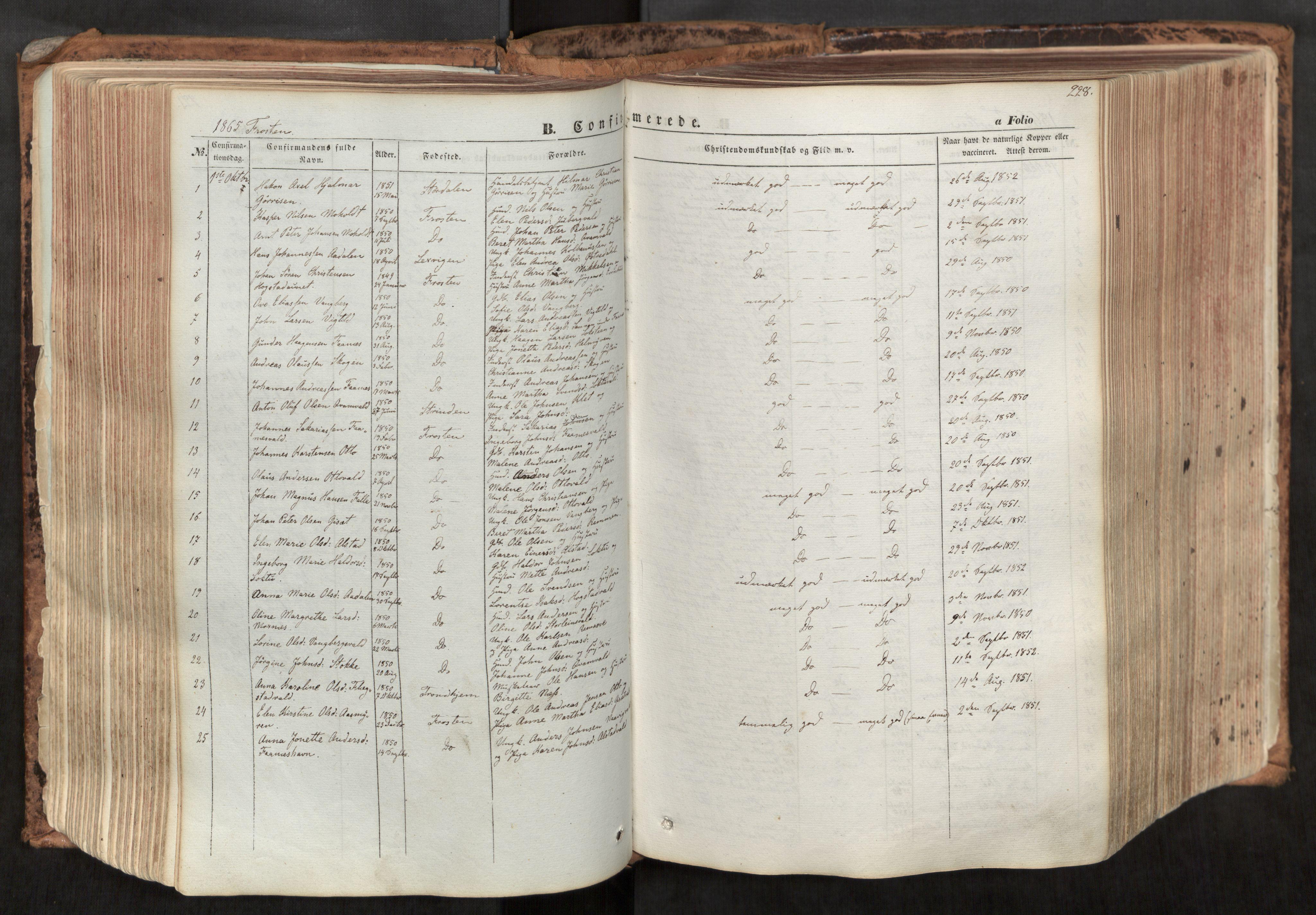 SAT, Ministerialprotokoller, klokkerbøker og fødselsregistre - Nord-Trøndelag, 713/L0116: Ministerialbok nr. 713A07, 1850-1877, s. 228
