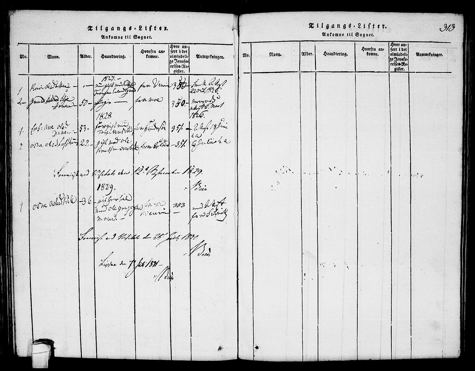 SAKO, Seljord kirkebøker, F/Fc/L0001: Ministerialbok nr. III 1, 1815-1831, s. 313