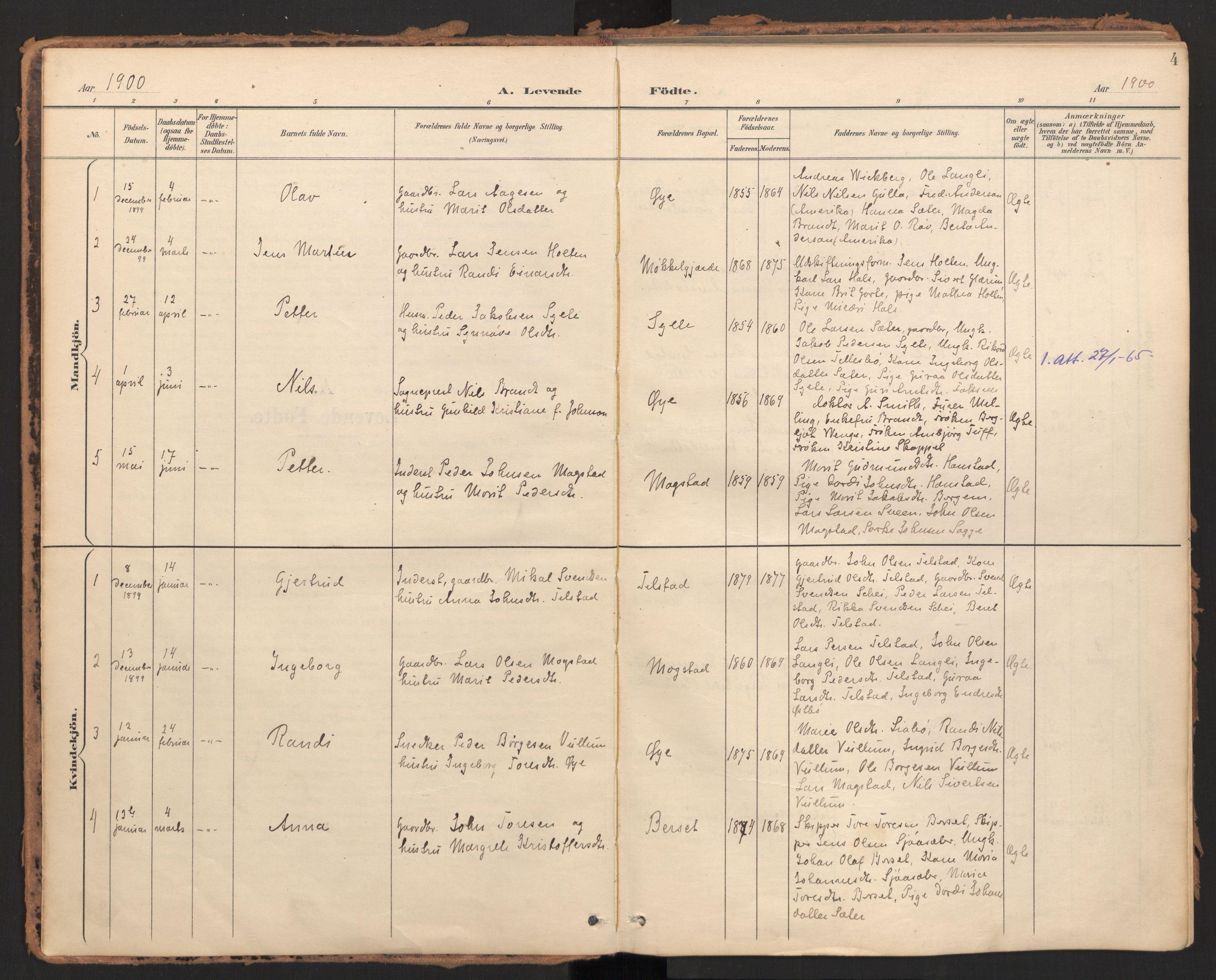SAT, Ministerialprotokoller, klokkerbøker og fødselsregistre - Møre og Romsdal, 595/L1048: Ministerialbok nr. 595A10, 1900-1917, s. 4