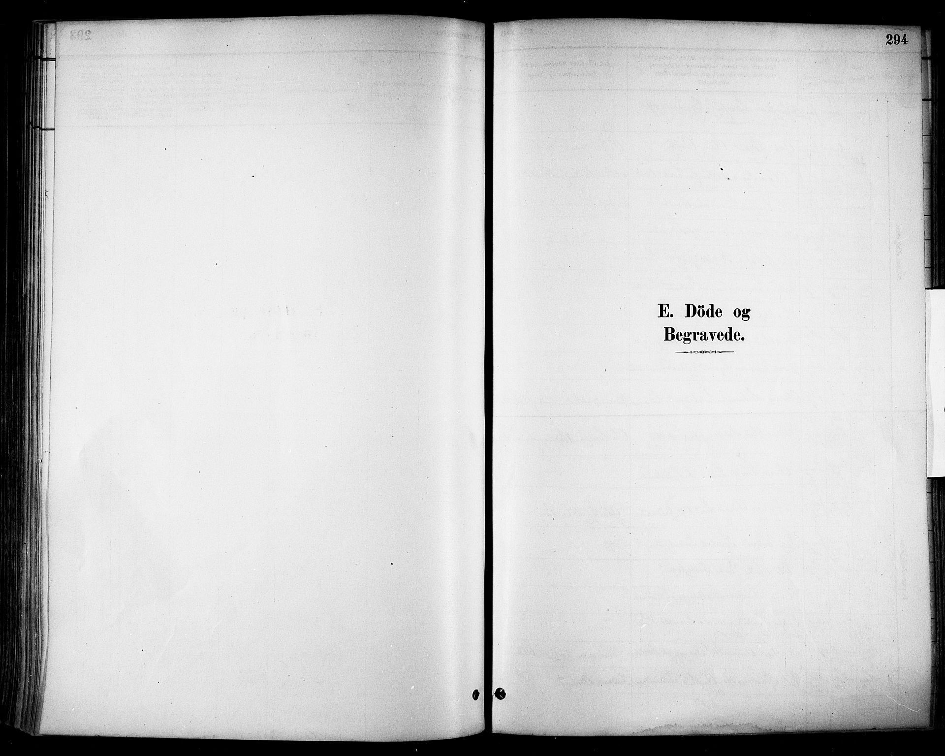 SAH, Stange prestekontor, K/L0017: Ministerialbok nr. 17, 1880-1893, s. 294