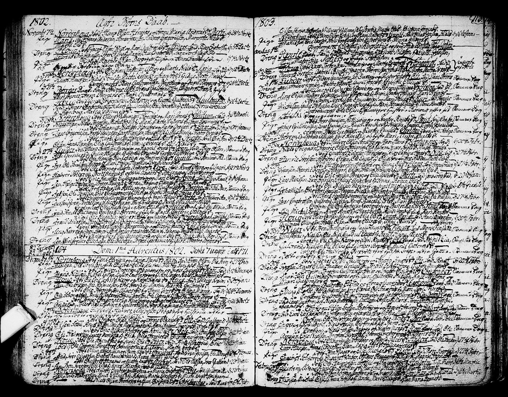 SAKO, Norderhov kirkebøker, F/Fa/L0006: Ministerialbok nr. 6, 1789-1811, s. 113