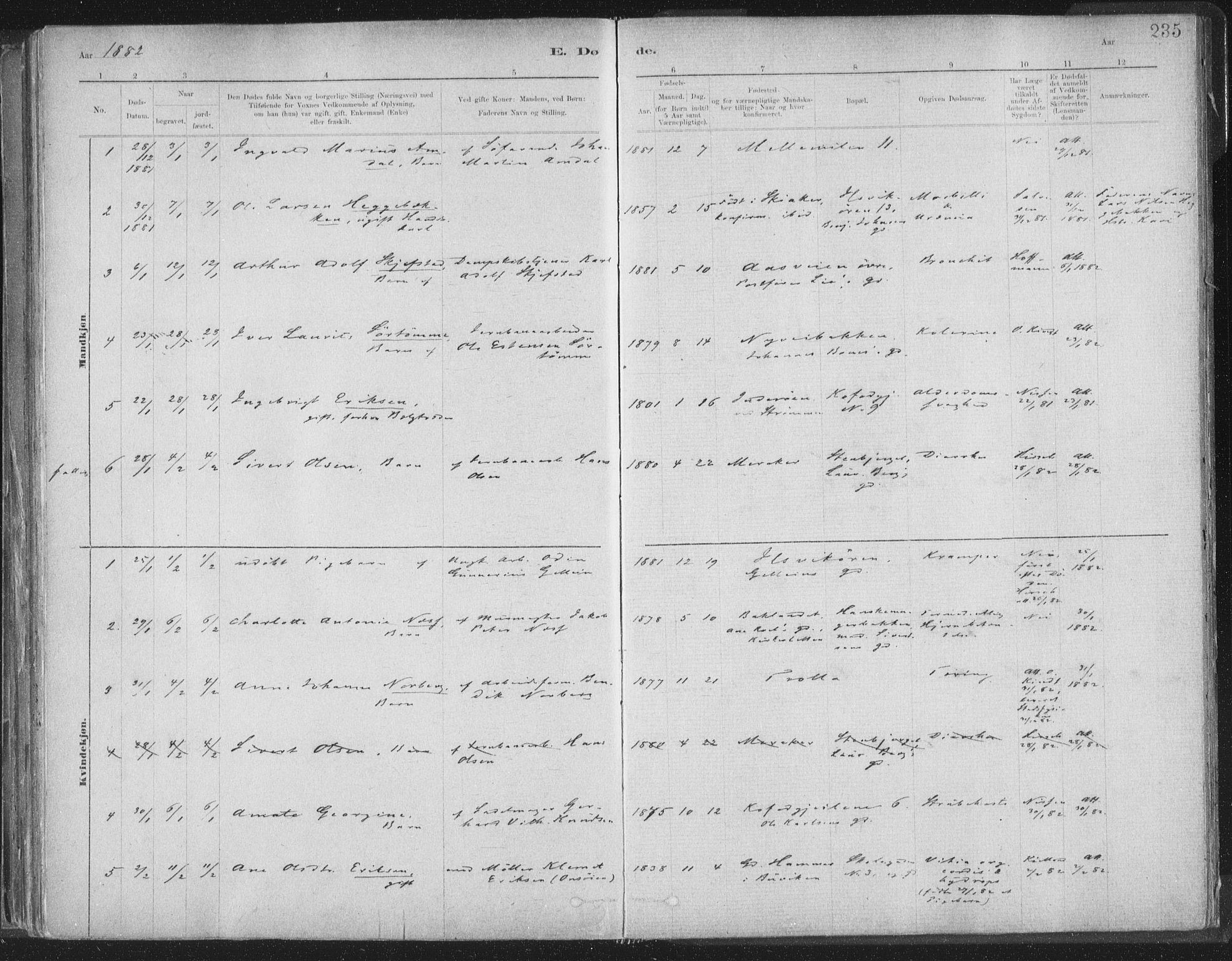 SAT, Ministerialprotokoller, klokkerbøker og fødselsregistre - Sør-Trøndelag, 603/L0162: Ministerialbok nr. 603A01, 1879-1895, s. 235