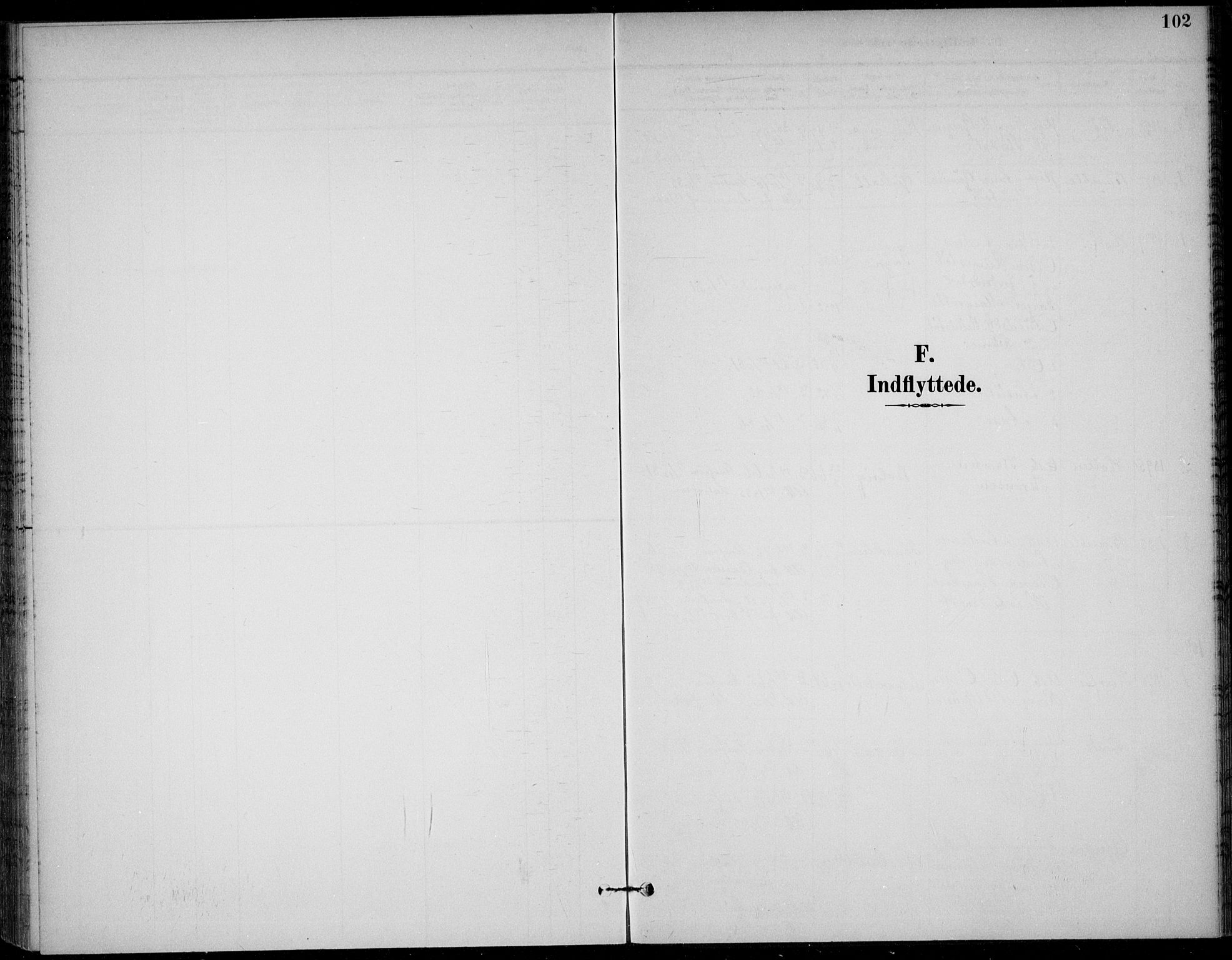 SAKO, Solum kirkebøker, F/Fc/L0002: Ministerialbok nr. III 2, 1892-1906, s. 102