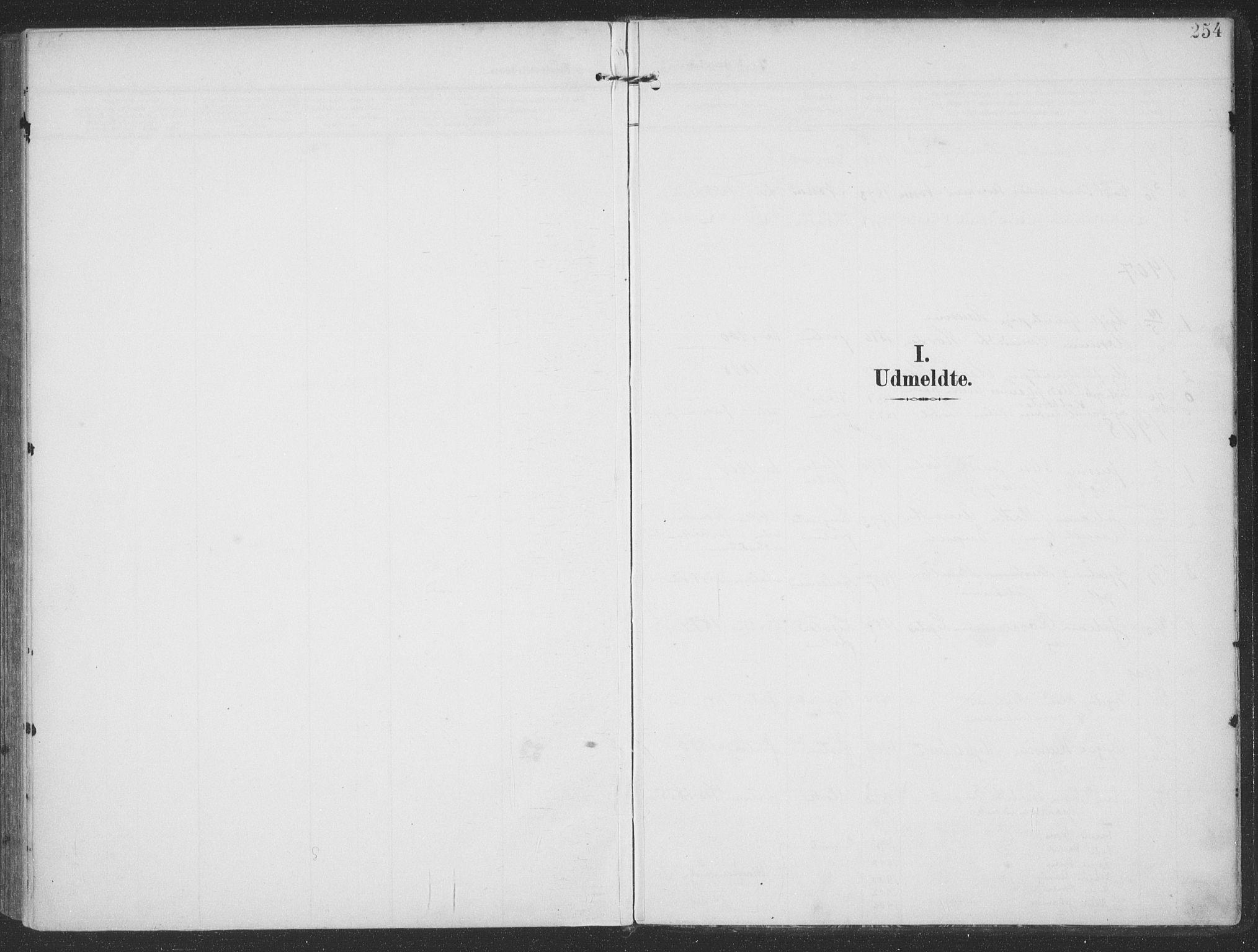 SAT, Ministerialprotokoller, klokkerbøker og fødselsregistre - Møre og Romsdal, 513/L0178: Ministerialbok nr. 513A05, 1906-1919, s. 254