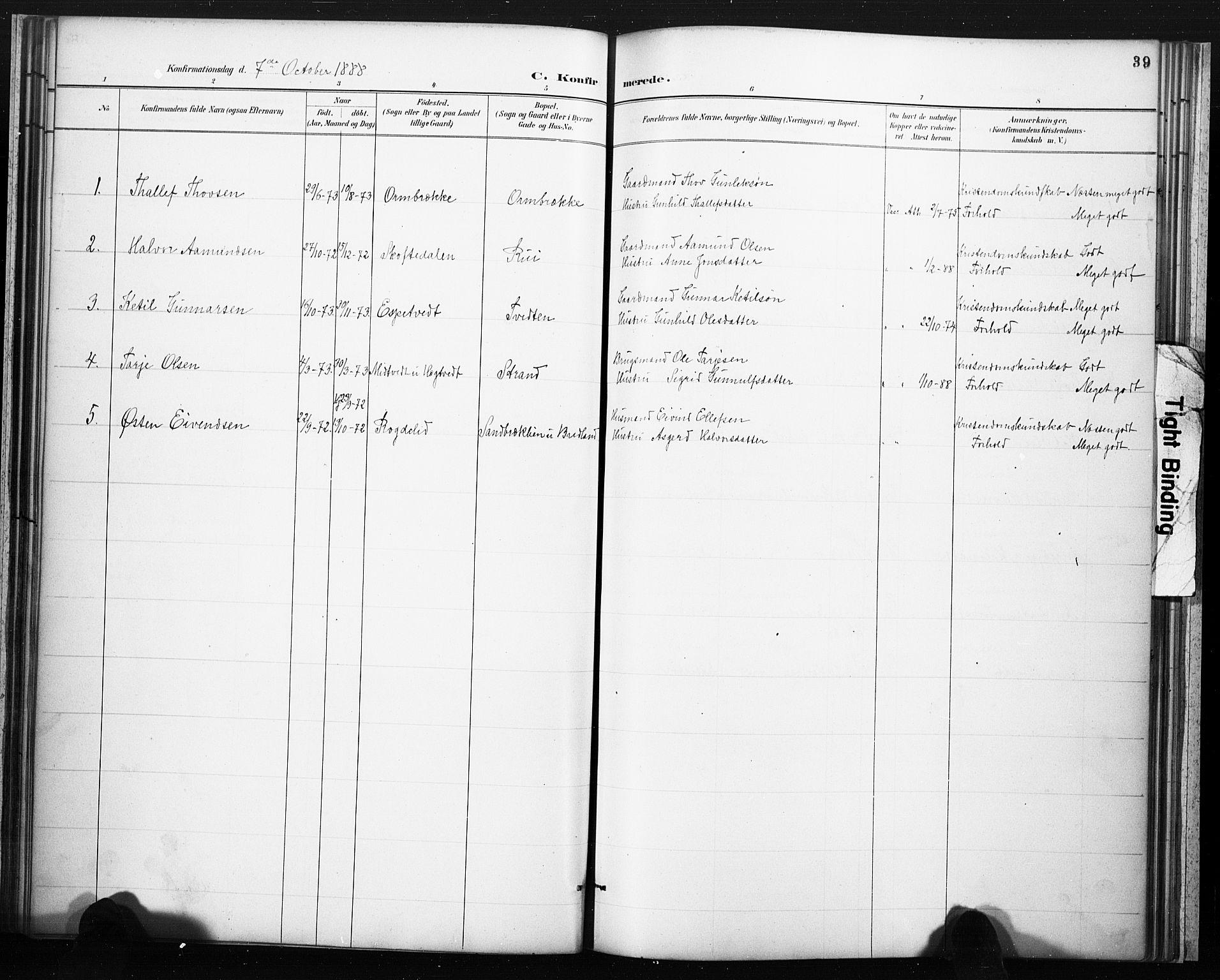 SAKO, Lårdal kirkebøker, F/Fc/L0002: Ministerialbok nr. III 2, 1887-1906, s. 39