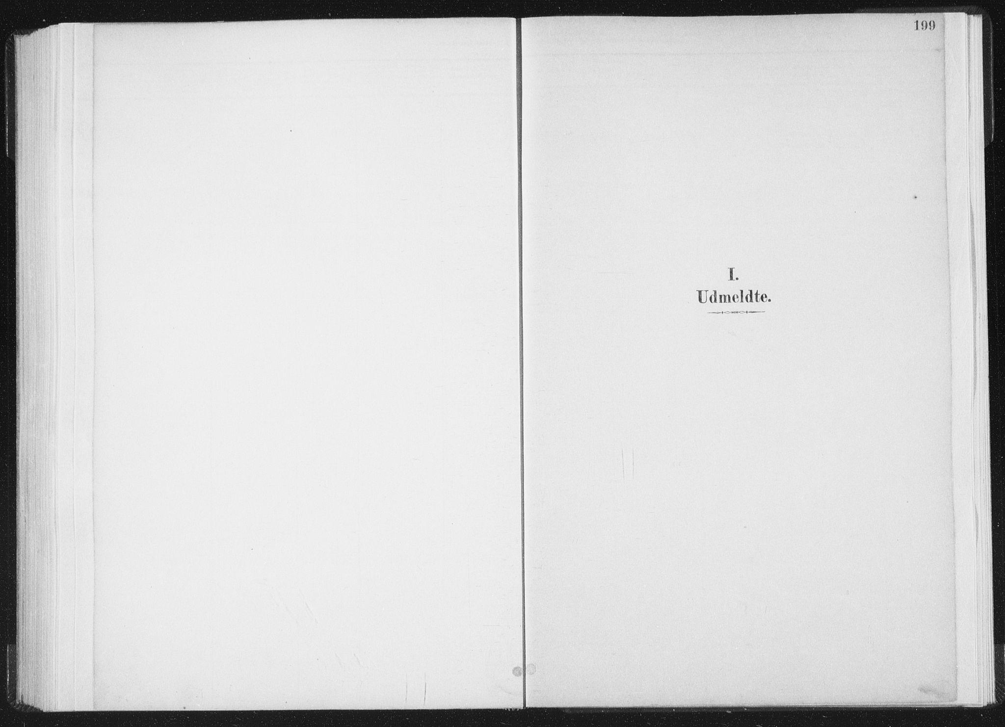 SAT, Ministerialprotokoller, klokkerbøker og fødselsregistre - Nord-Trøndelag, 771/L0597: Ministerialbok nr. 771A04, 1885-1910, s. 199