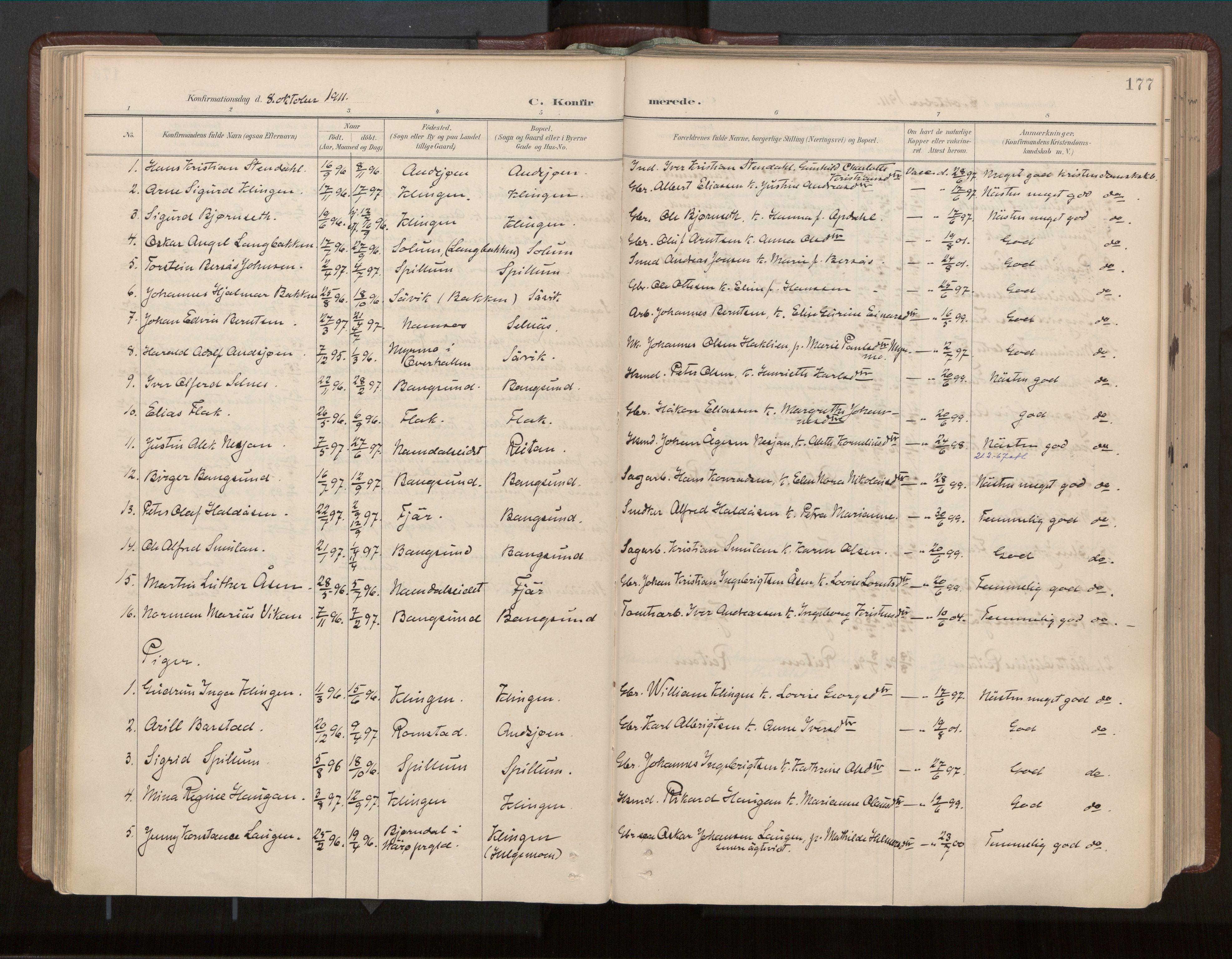 SAT, Ministerialprotokoller, klokkerbøker og fødselsregistre - Nord-Trøndelag, 770/L0589: Ministerialbok nr. 770A03, 1887-1929, s. 177