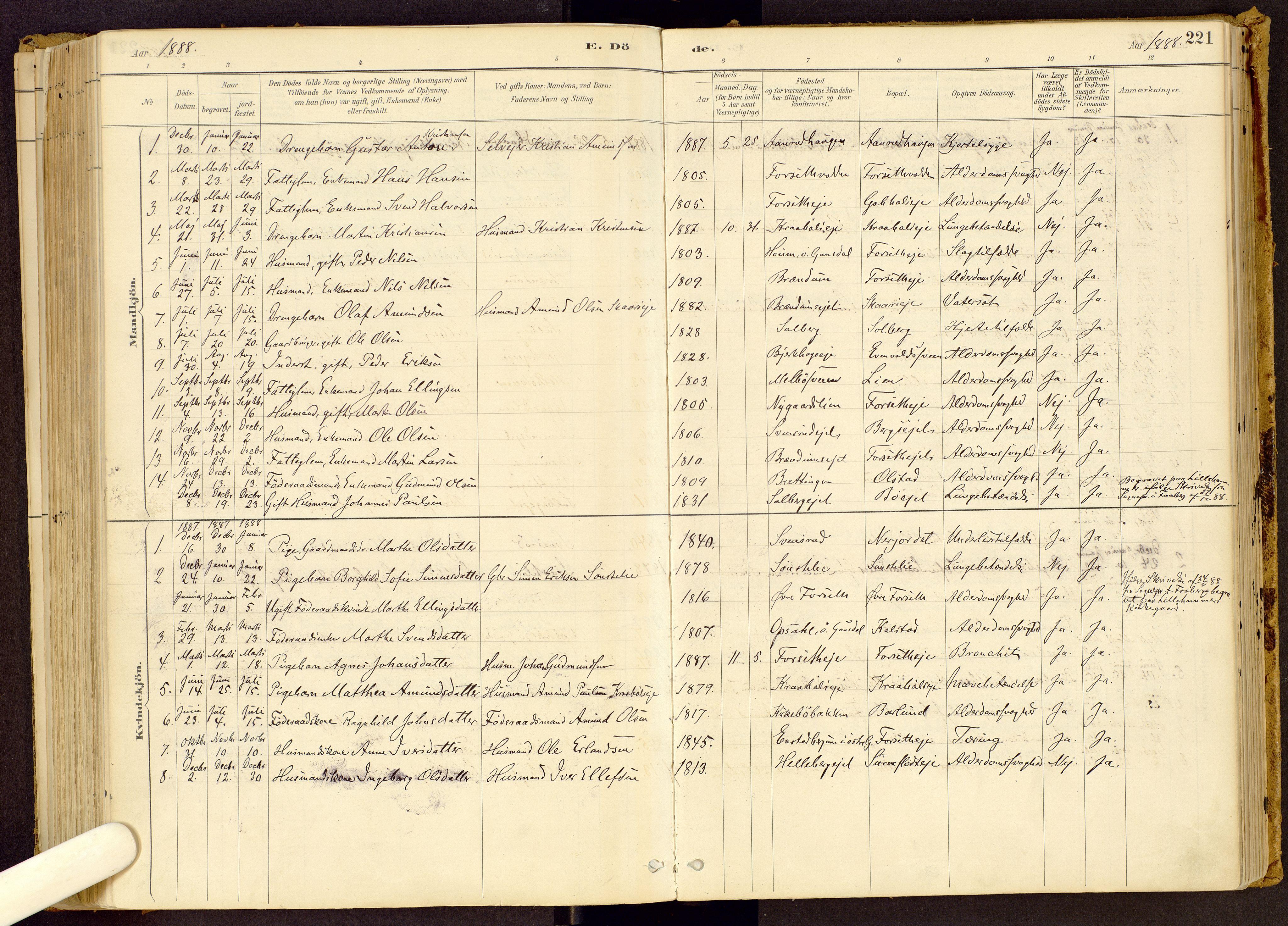SAH, Vestre Gausdal prestekontor, Ministerialbok nr. 1, 1887-1914, s. 221