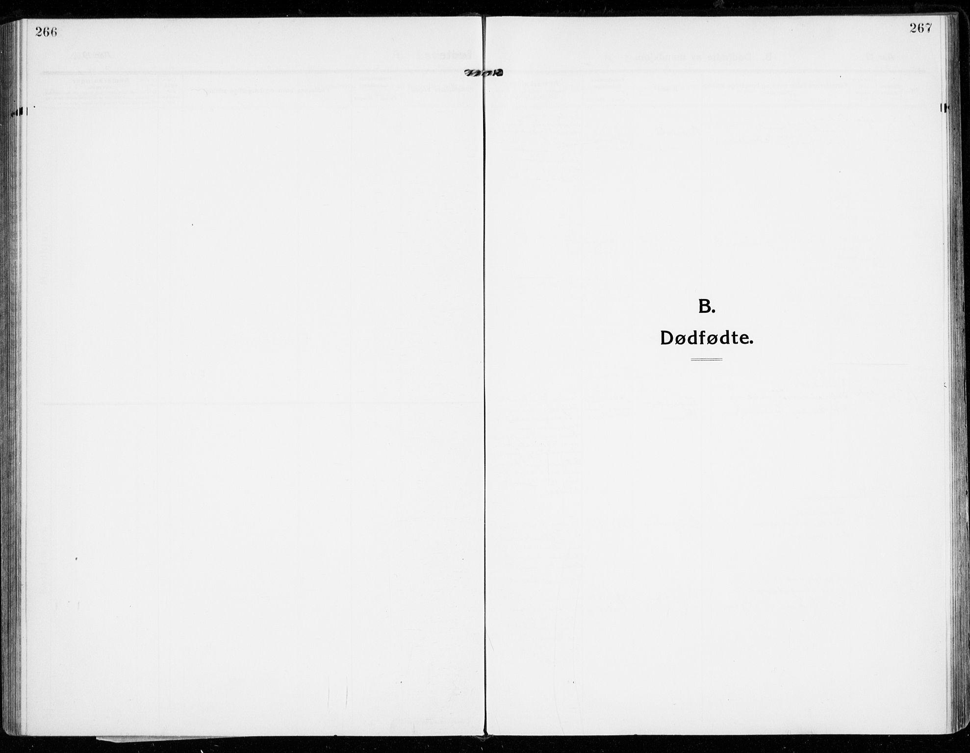 SAKO, Strømsgodset kirkebøker, F/Fa/L0002: Ministerialbok nr. 2, 1910-1920, s. 266-267