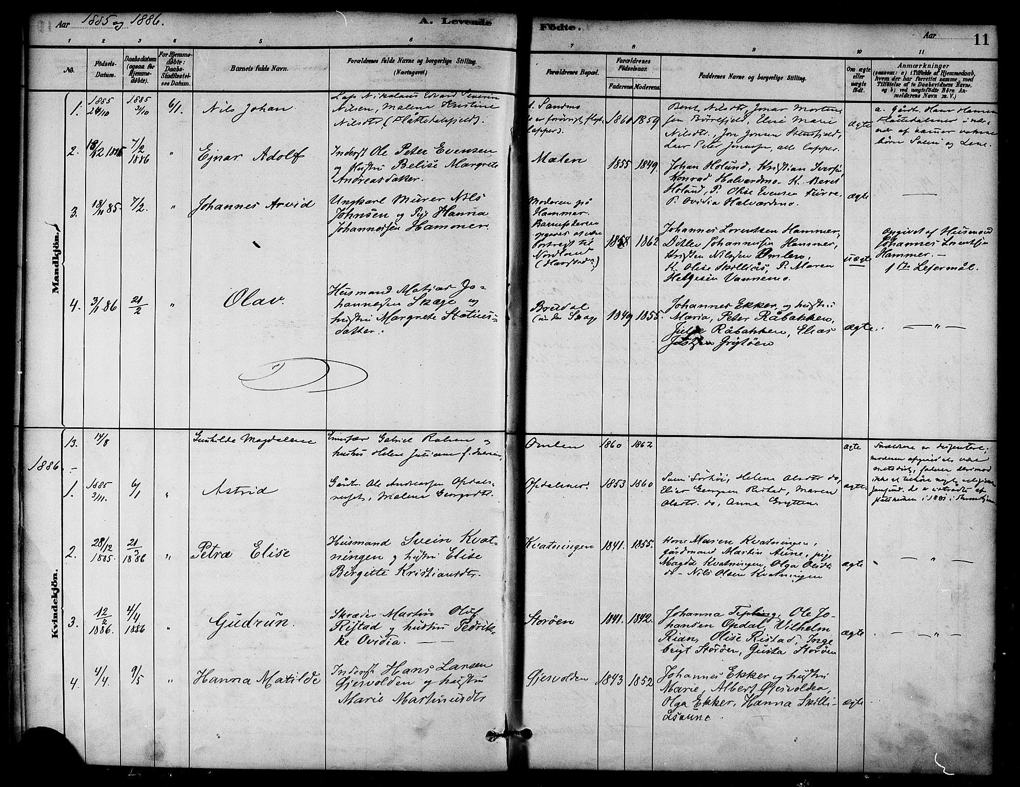 SAT, Ministerialprotokoller, klokkerbøker og fødselsregistre - Nord-Trøndelag, 766/L0563: Ministerialbok nr. 767A01, 1881-1899, s. 11