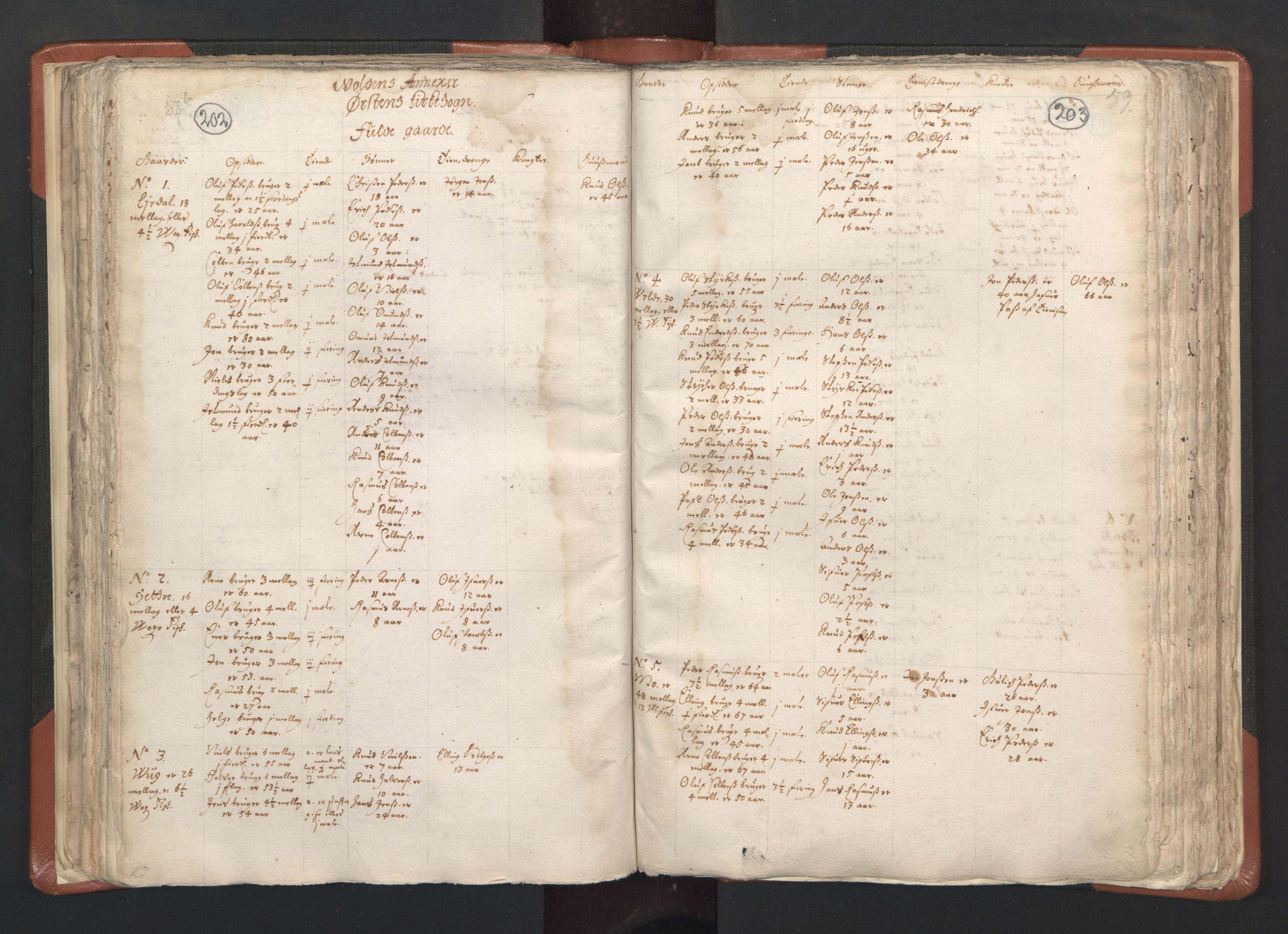 RA, Sogneprestenes manntall 1664-1666, nr. 26: Sunnmøre prosti, 1664-1666, s. 202-203
