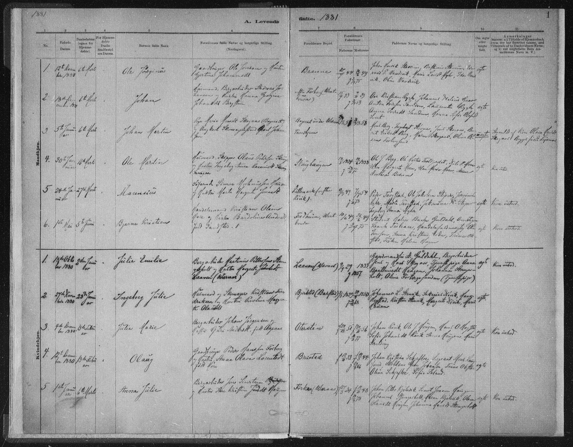 SAT, Ministerialprotokoller, klokkerbøker og fødselsregistre - Nord-Trøndelag, 722/L0220: Ministerialbok nr. 722A07, 1881-1908, s. 1