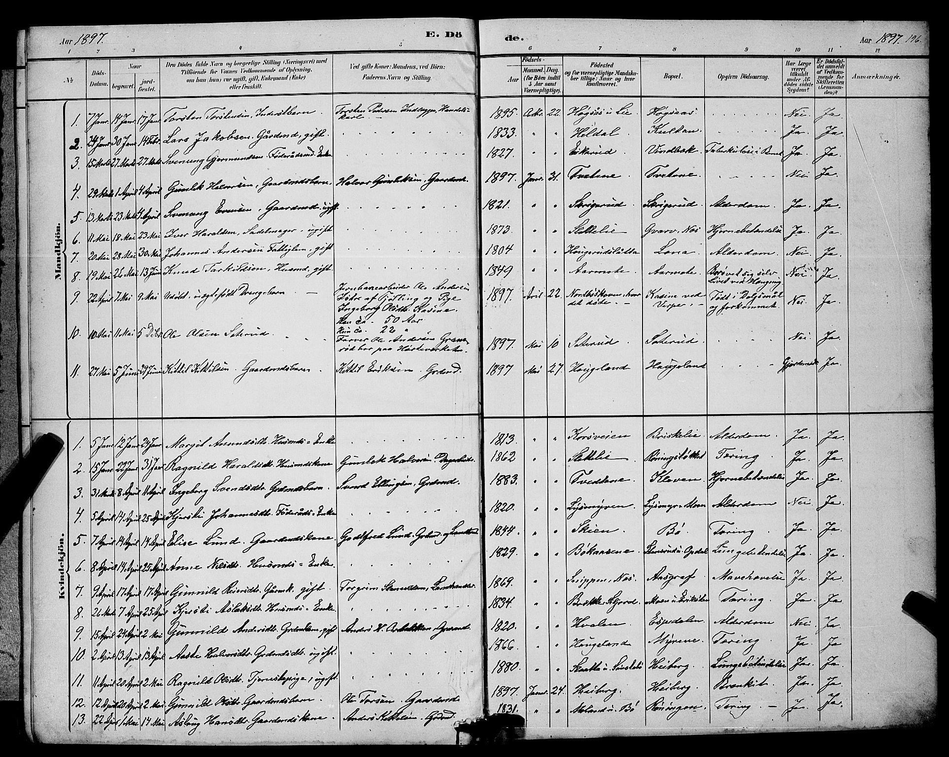 SAKO, Bø kirkebøker, G/Ga/L0005: Klokkerbok nr. 5, 1883-1897, s. 196