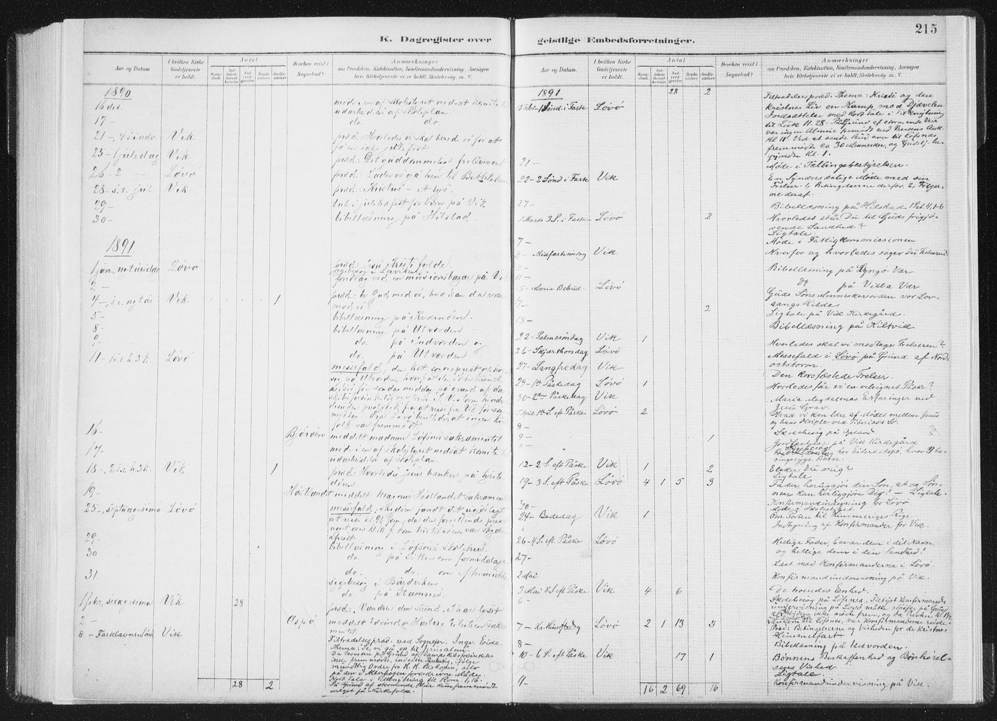 SAT, Ministerialprotokoller, klokkerbøker og fødselsregistre - Nord-Trøndelag, 771/L0597: Ministerialbok nr. 771A04, 1885-1910, s. 215