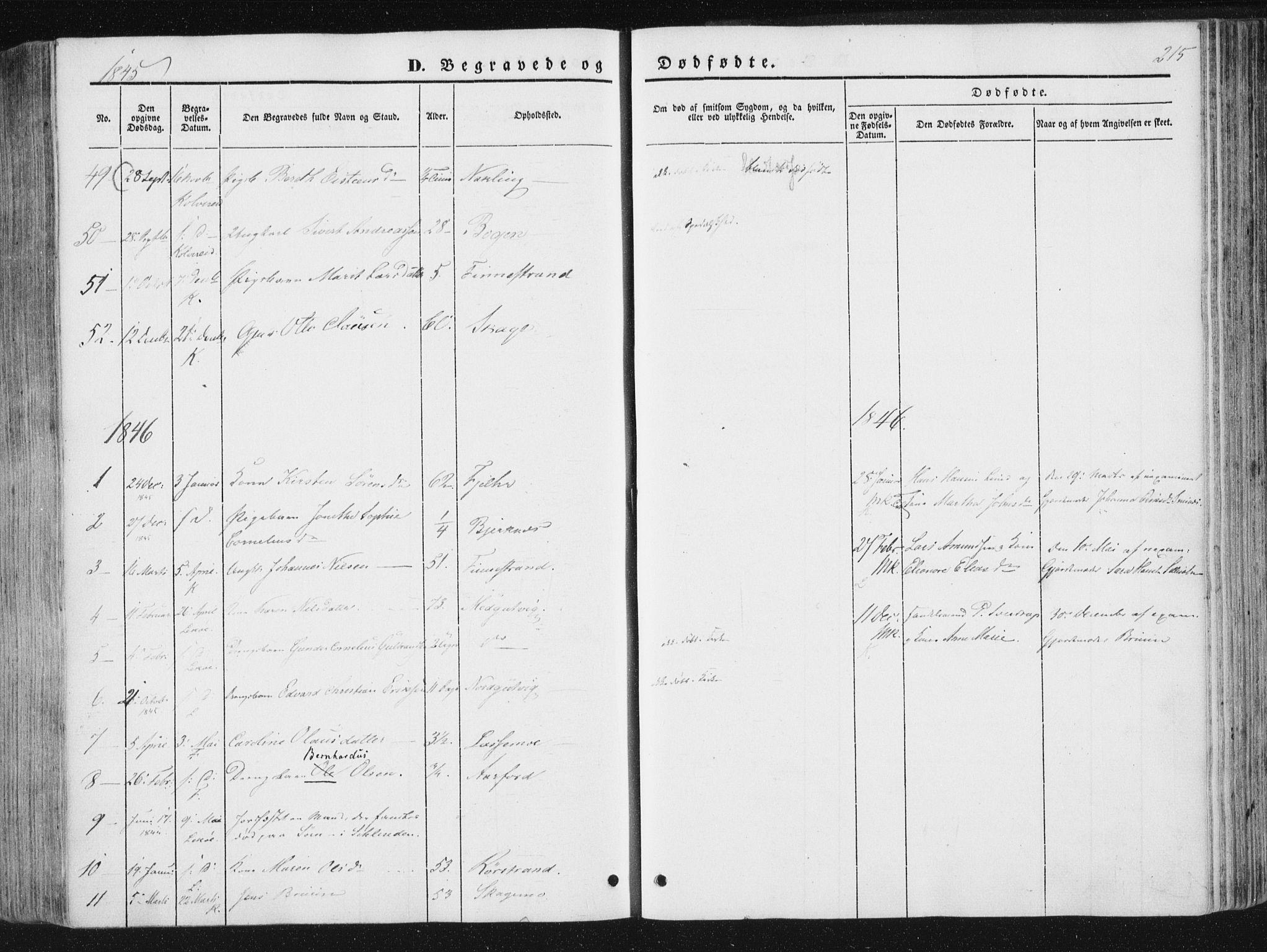 SAT, Ministerialprotokoller, klokkerbøker og fødselsregistre - Nord-Trøndelag, 780/L0640: Ministerialbok nr. 780A05, 1845-1856, s. 215