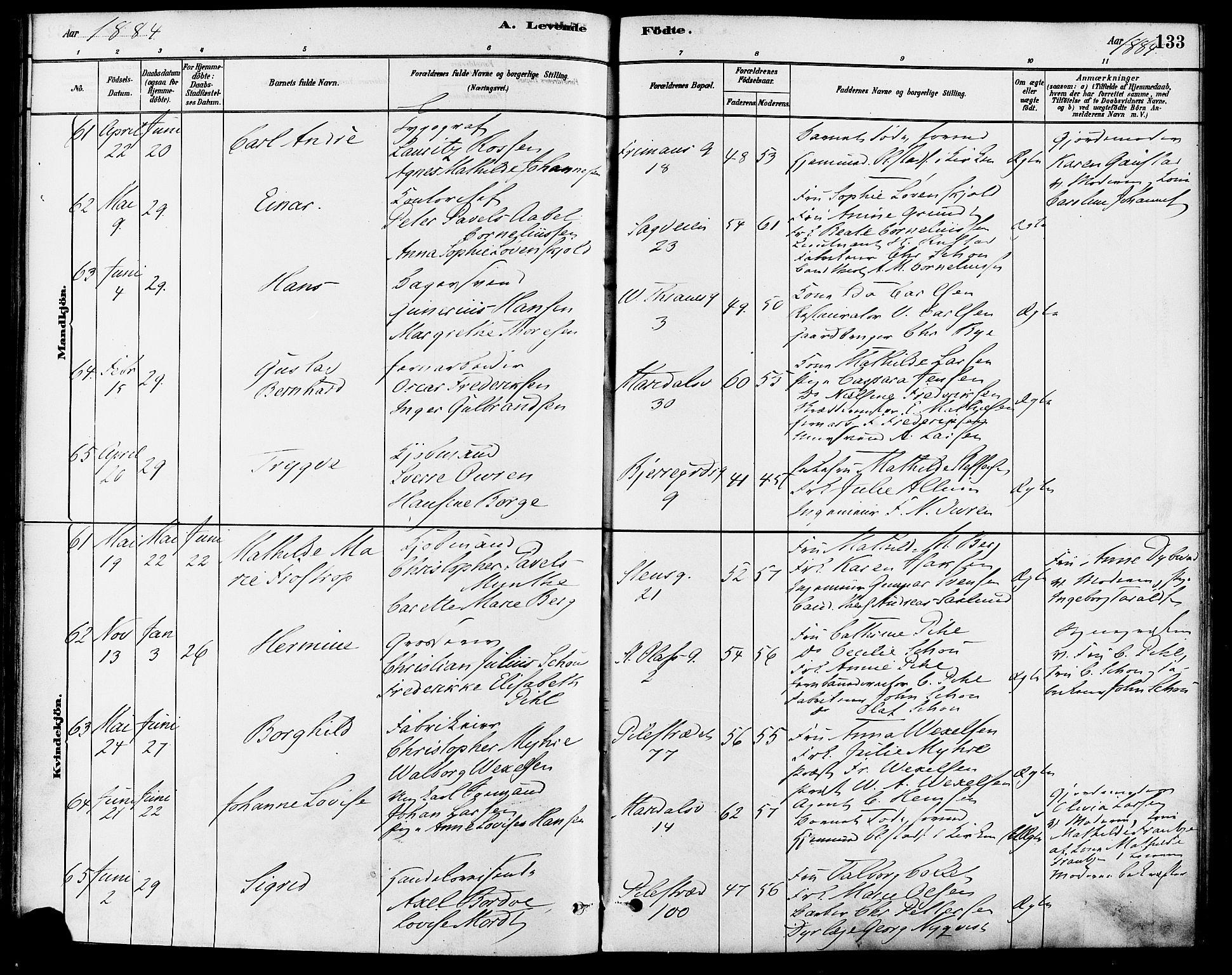SAO, Gamle Aker prestekontor Kirkebøker, F/L0006: Ministerialbok nr. 6, 1880-1887, s. 133