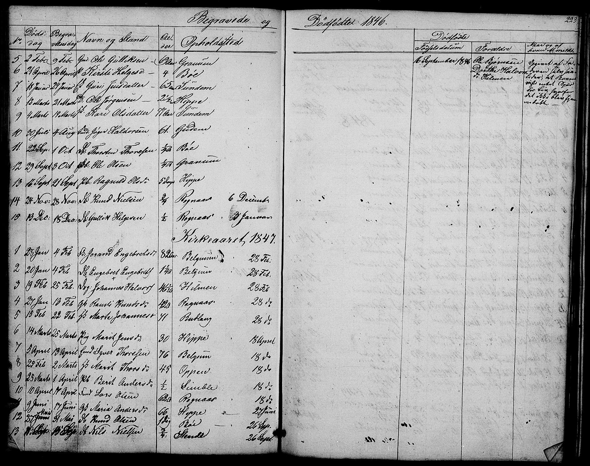 SAH, Nord-Aurdal prestekontor, Klokkerbok nr. 4, 1842-1882, s. 223