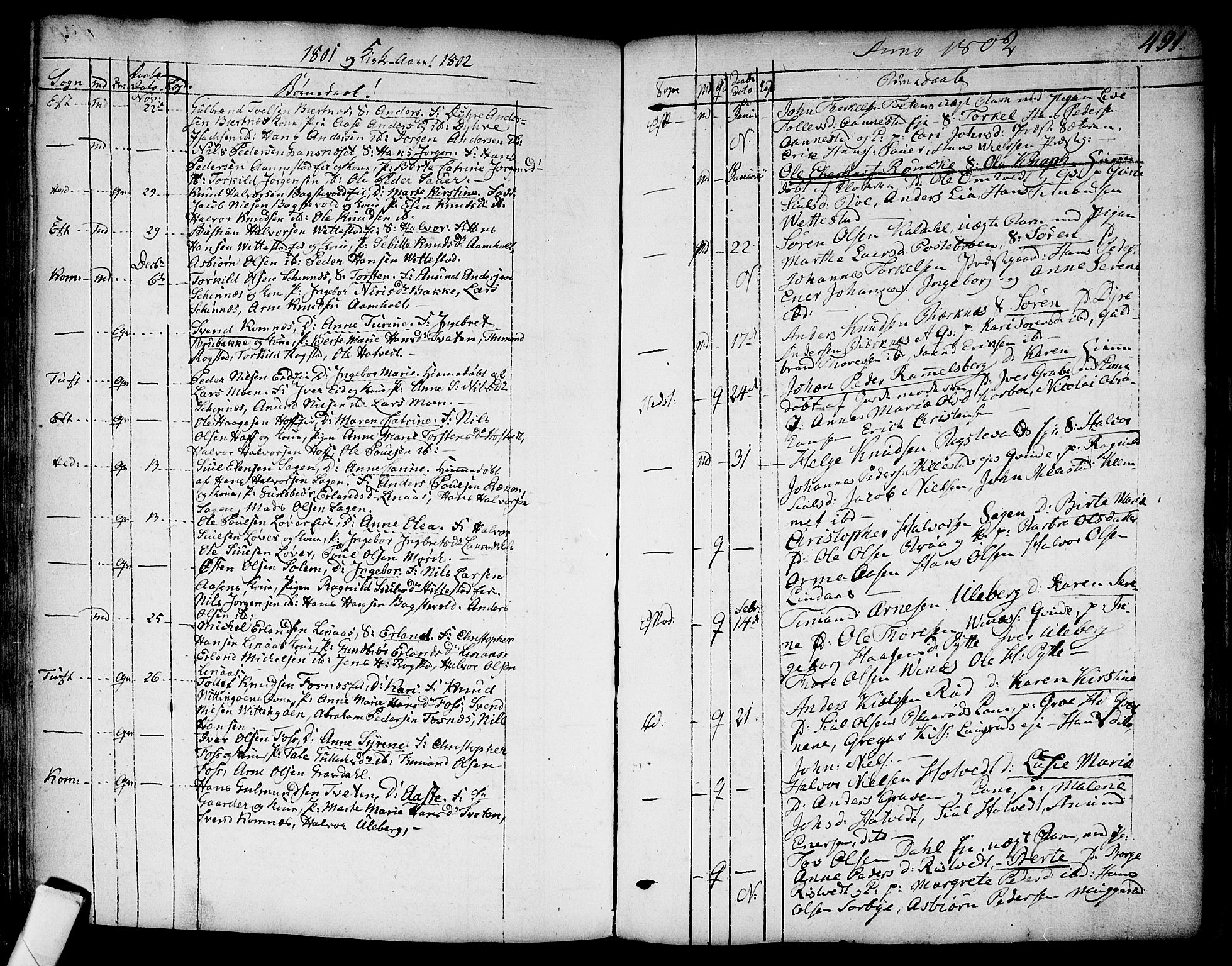 SAKO, Sandsvær kirkebøker, F/Fa/L0002a: Ministerialbok nr. I 2, 1725-1809, s. 491