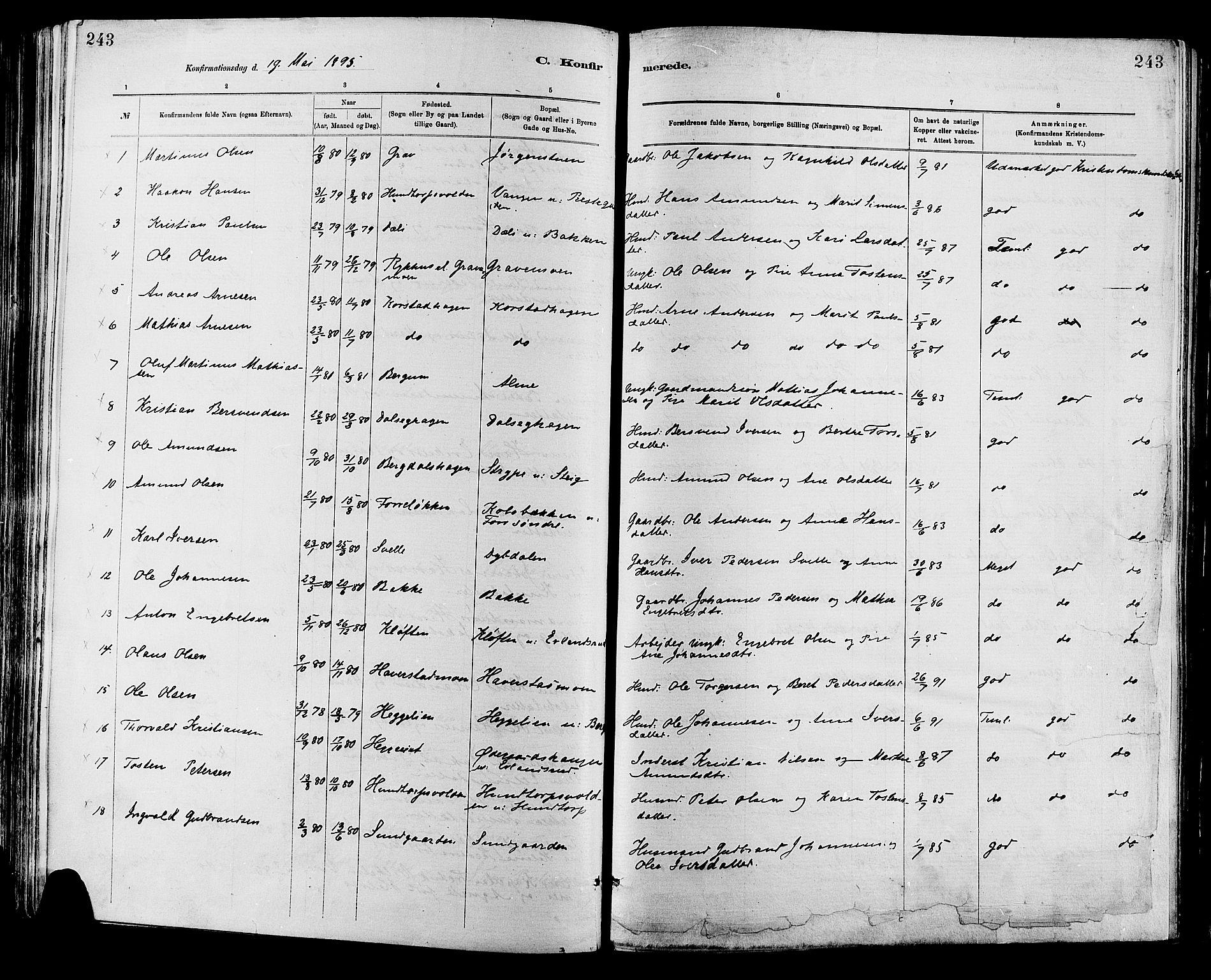 SAH, Sør-Fron prestekontor, H/Ha/Haa/L0003: Ministerialbok nr. 3, 1881-1897, s. 243